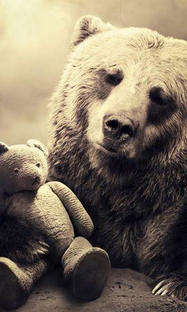 15700 скачать обои Животные, Артфото, Игрушки, Медведи - заставки и картинки бесплатно