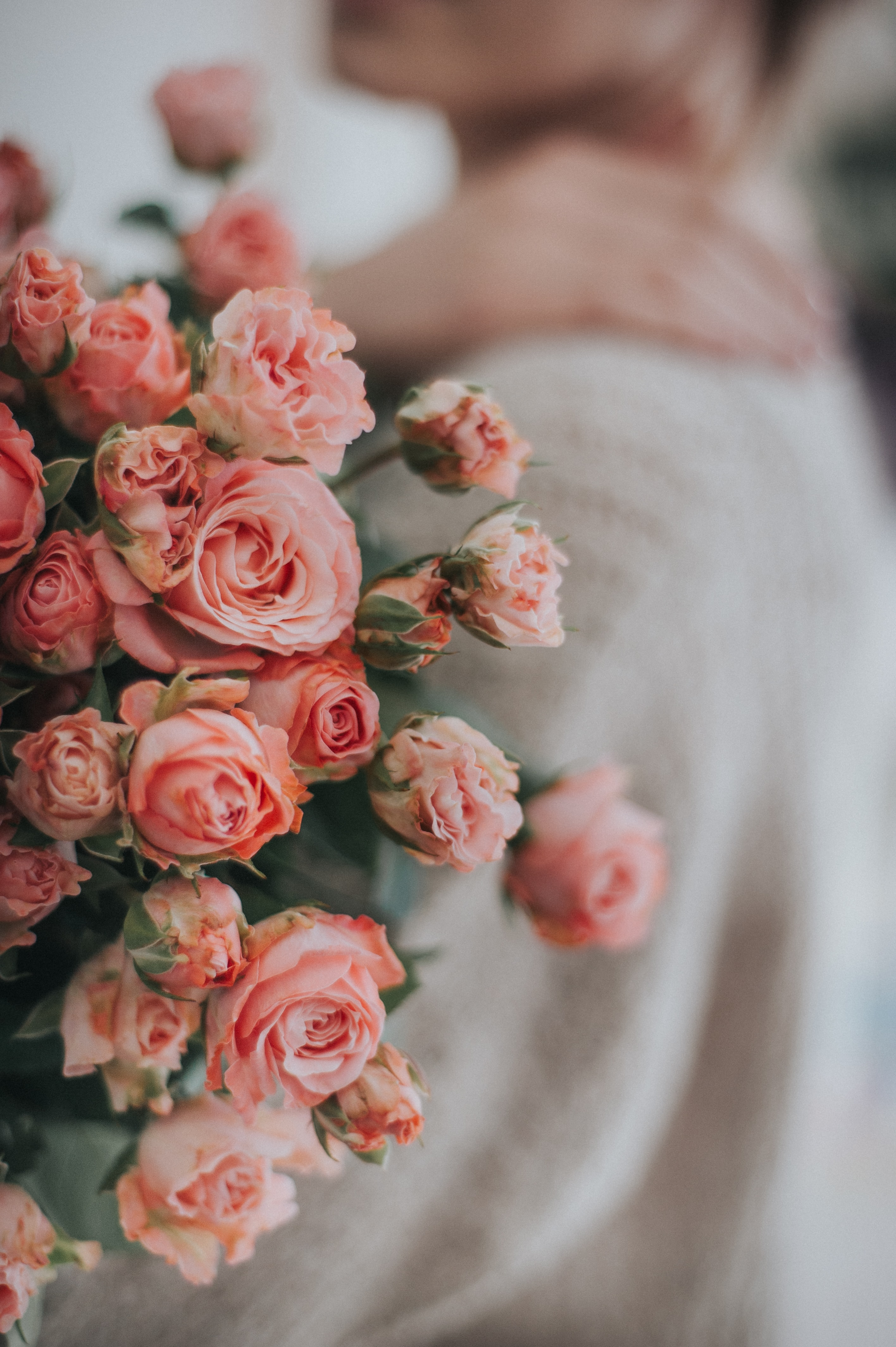 120384 Screensavers and Wallpapers Bouquet for phone. Download Flowers, Roses, Pink, Bouquet, Tender pictures for free