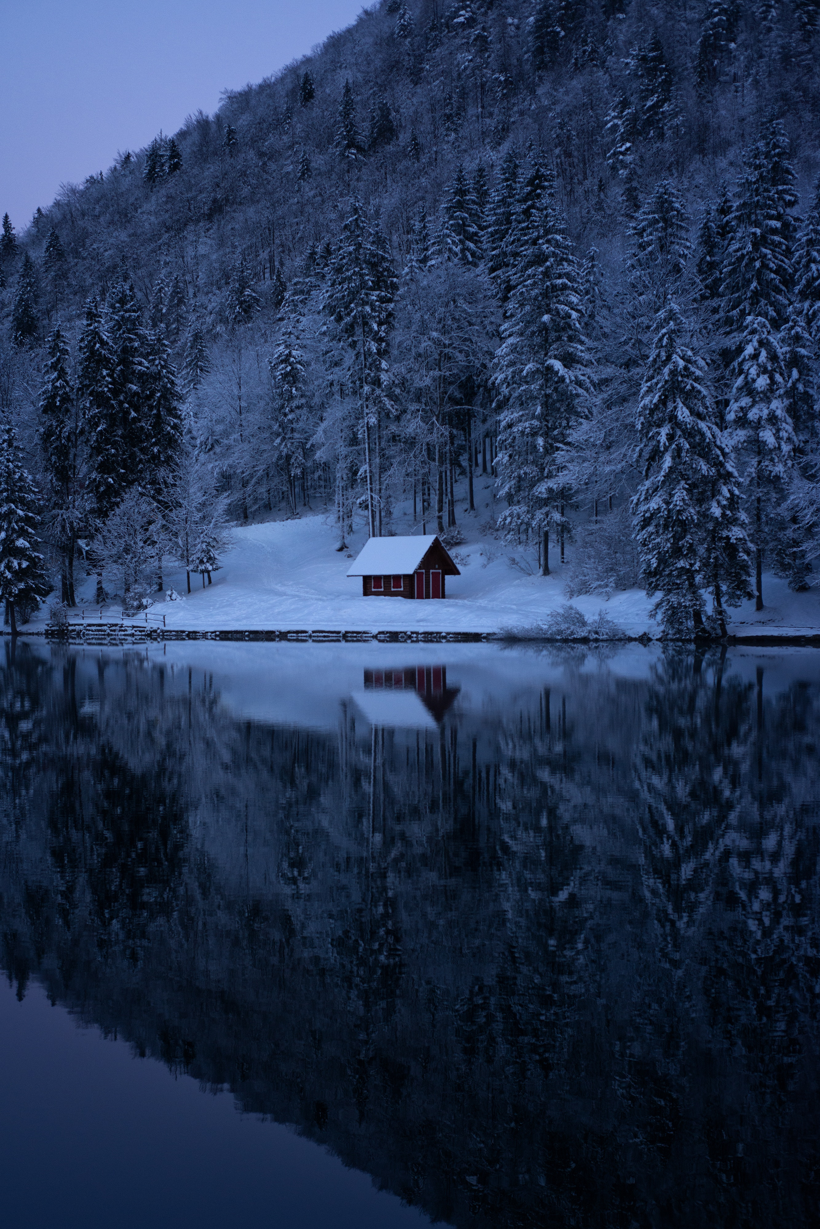 155936 download wallpaper Winter, Trees, Nature, Snow, Lake, Forest screensavers and pictures for free
