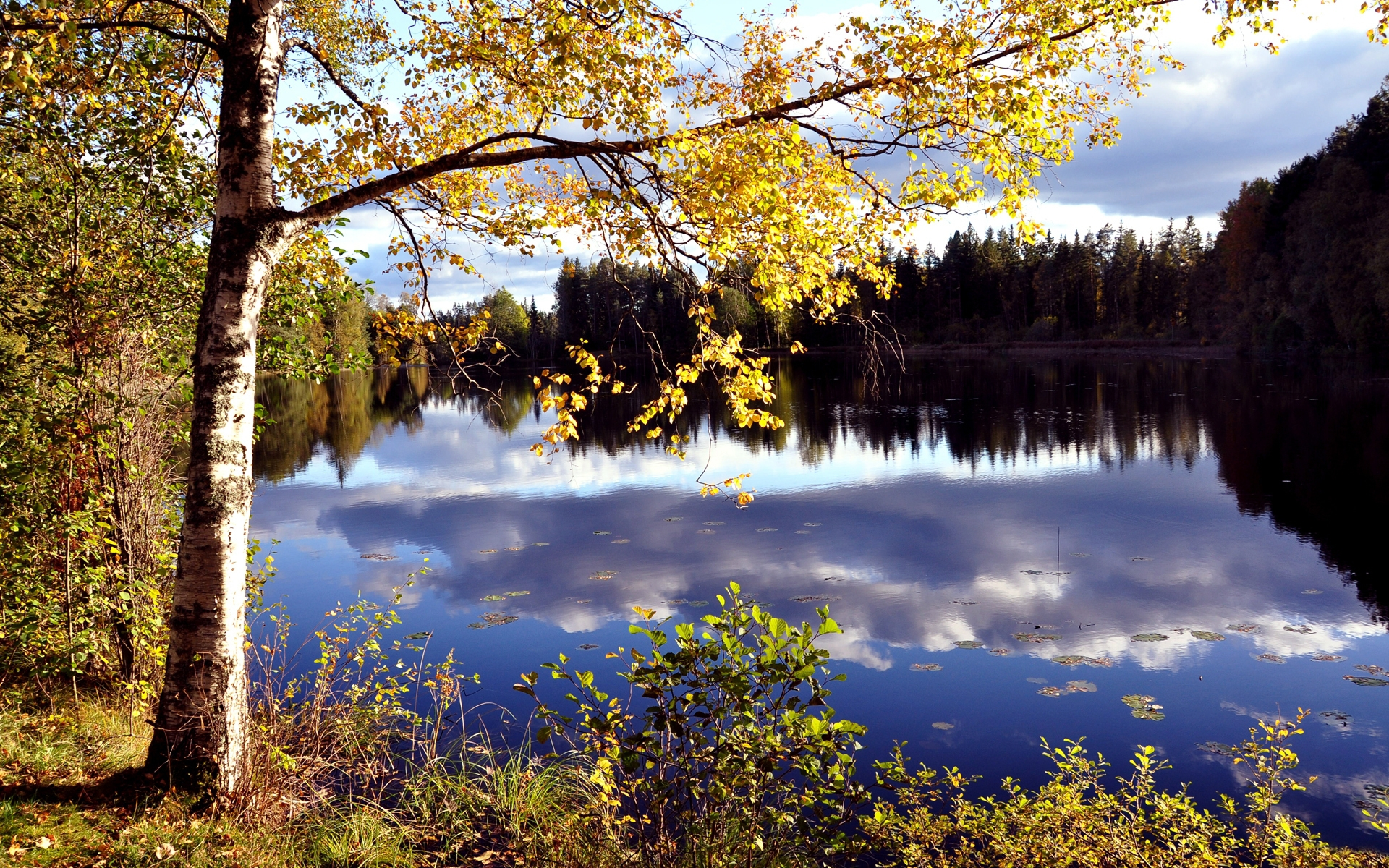 33998 download wallpaper Landscape, Rivers, Autumn screensavers and pictures for free