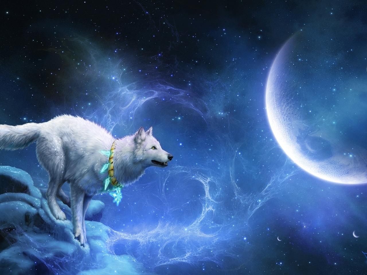 41380 免費下載壁紙 狼, 幻想, 背景, 月球 屏保和圖片
