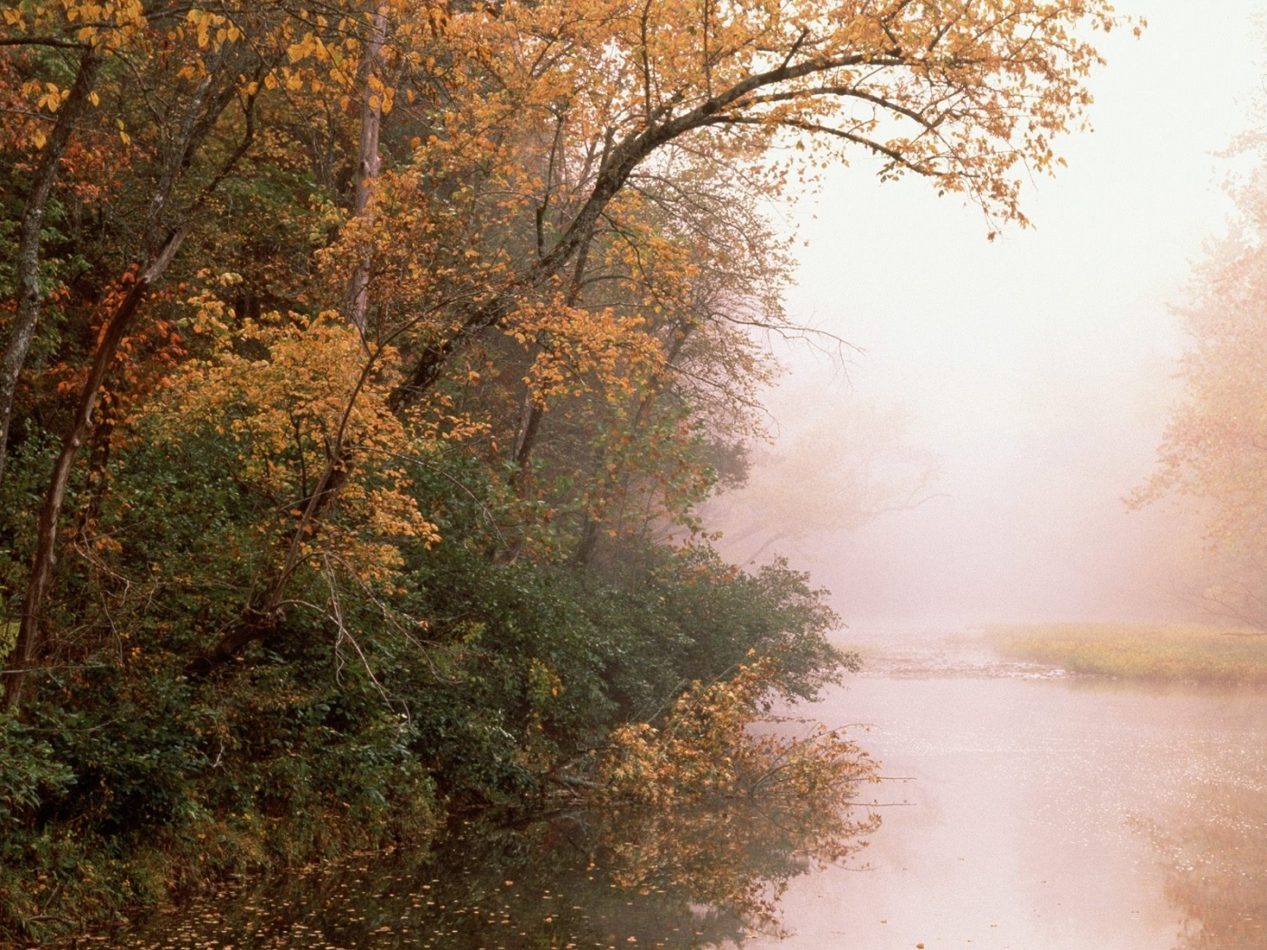29786 download wallpaper Landscape, Rivers, Trees, Autumn screensavers and pictures for free
