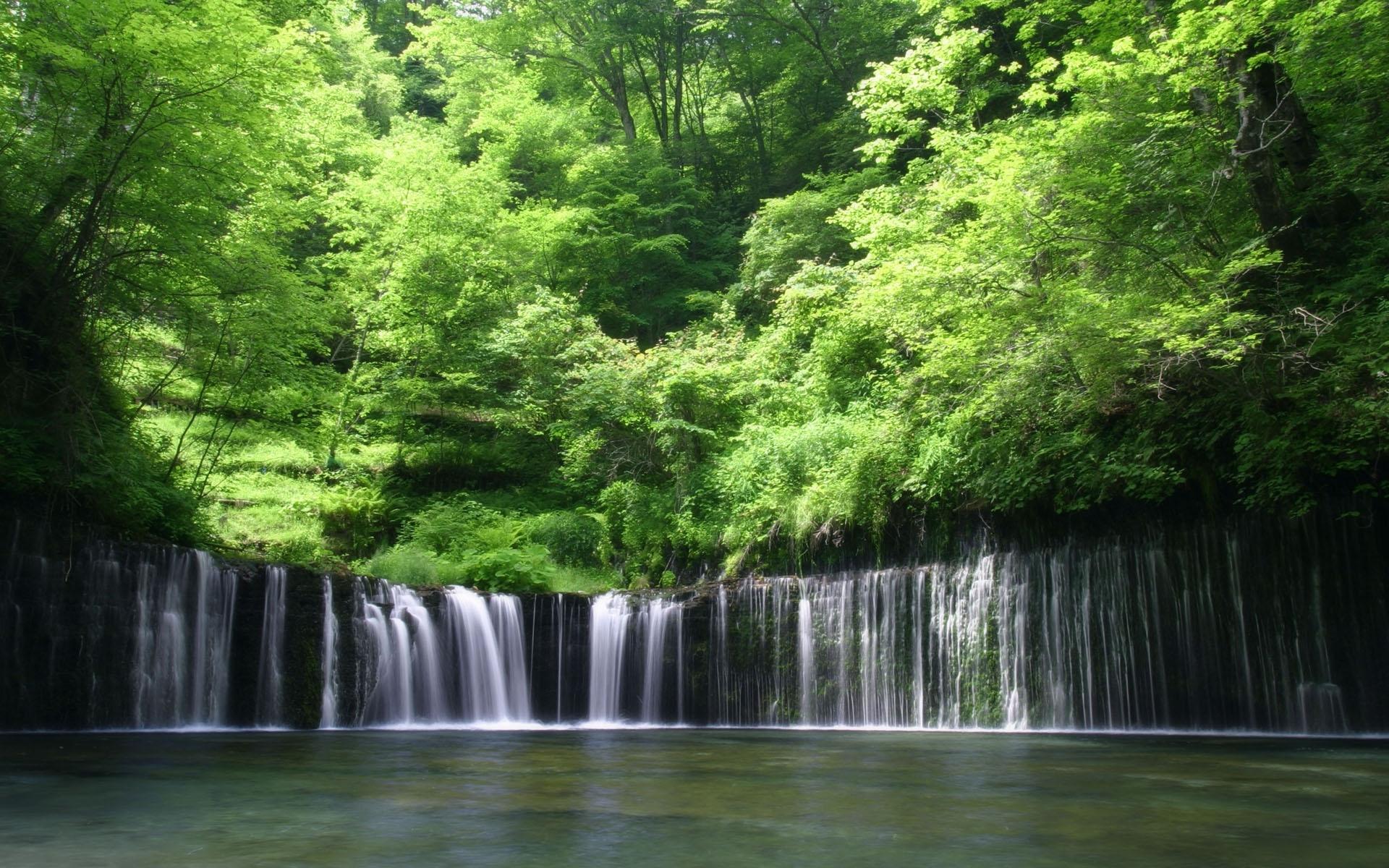 2474 скачать обои Пейзаж, Вода, Деревья, Водопады - заставки и картинки бесплатно