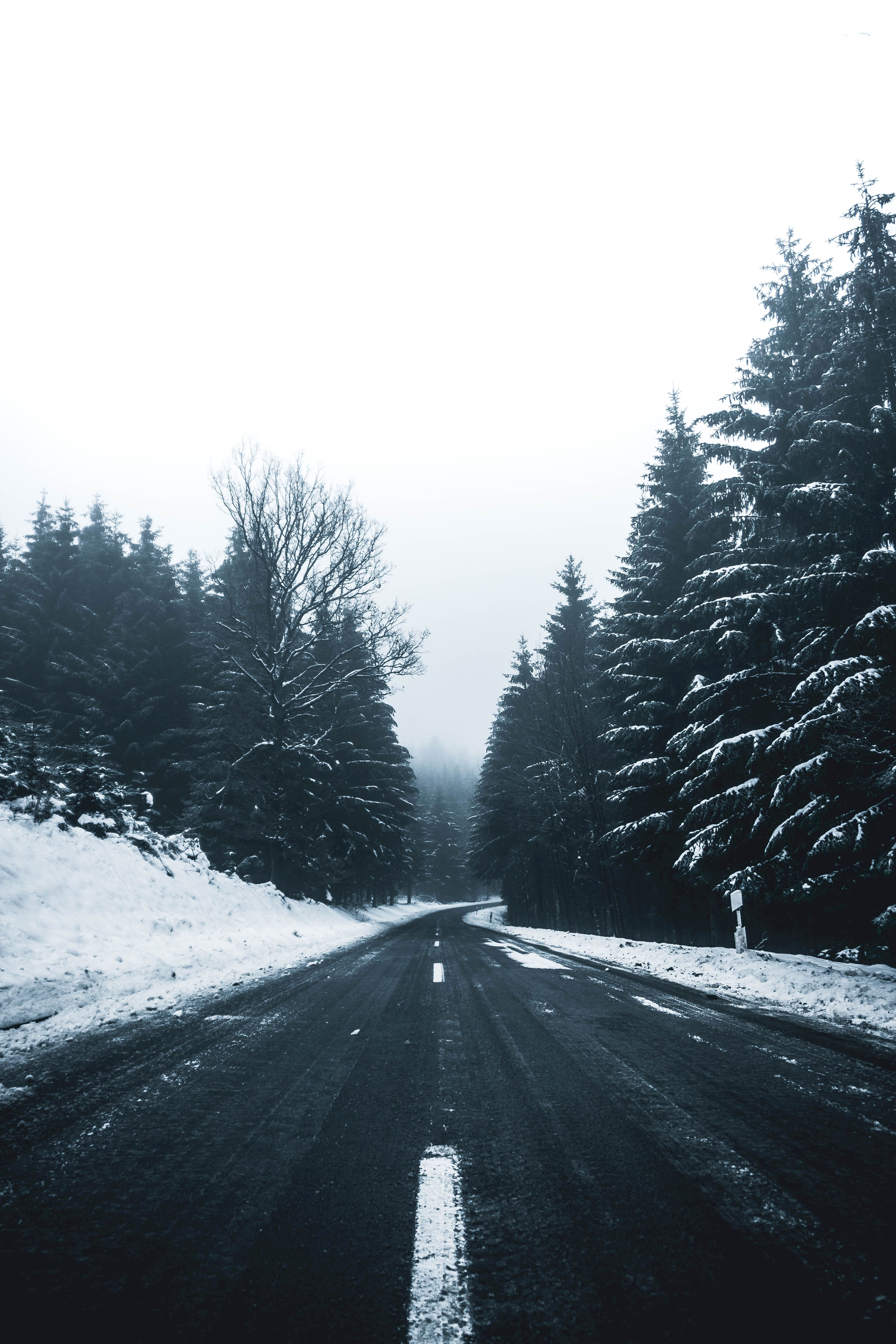 64759 Screensavers and Wallpapers Markup for phone. Download Winter, Nature, Trees, Snow, Road, Turn, Markup pictures for free