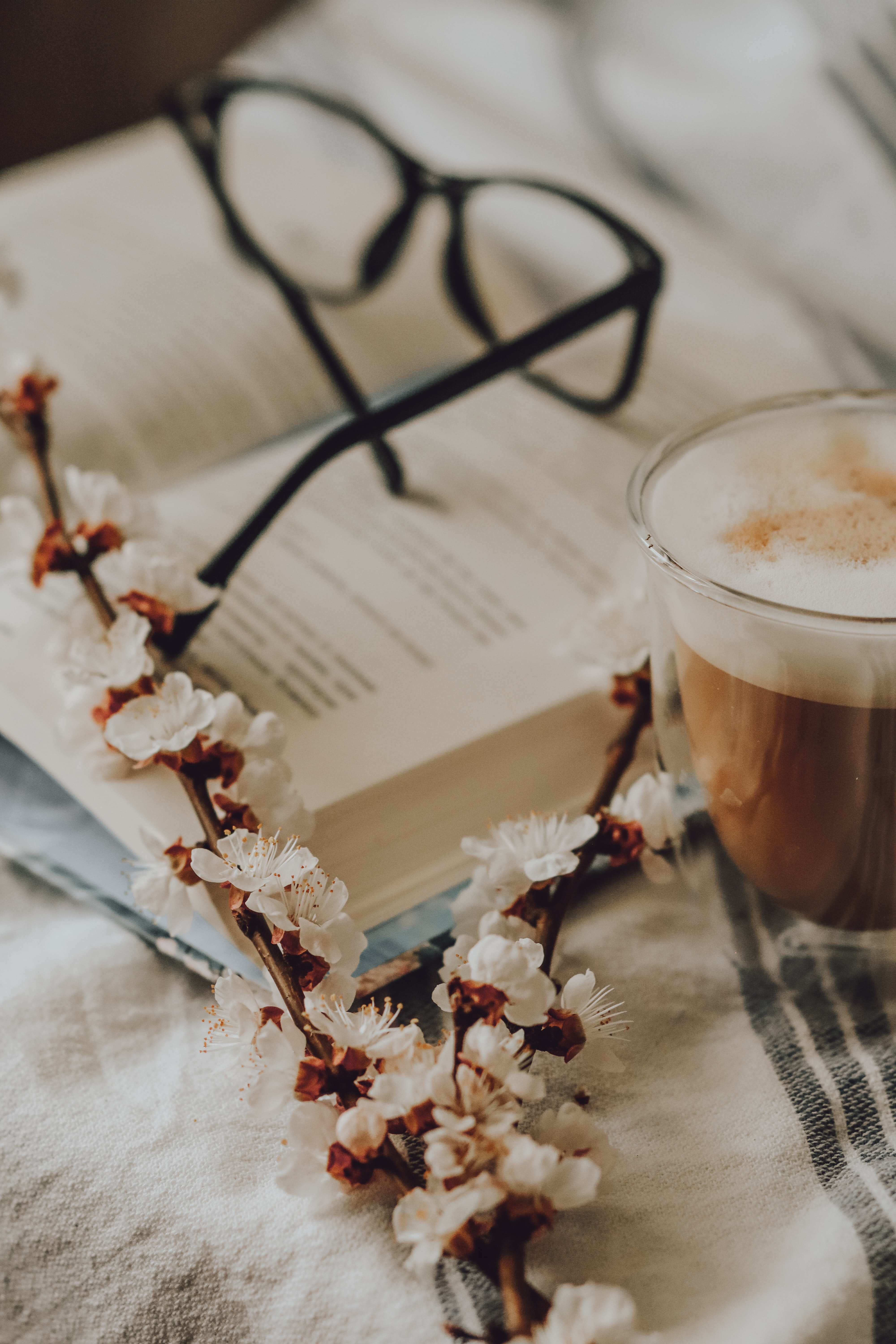102035 download wallpaper Miscellanea, Miscellaneous, Branch, Bloom, Flowering, Coffee, Glasses, Spectacles, Still Life screensavers and pictures for free