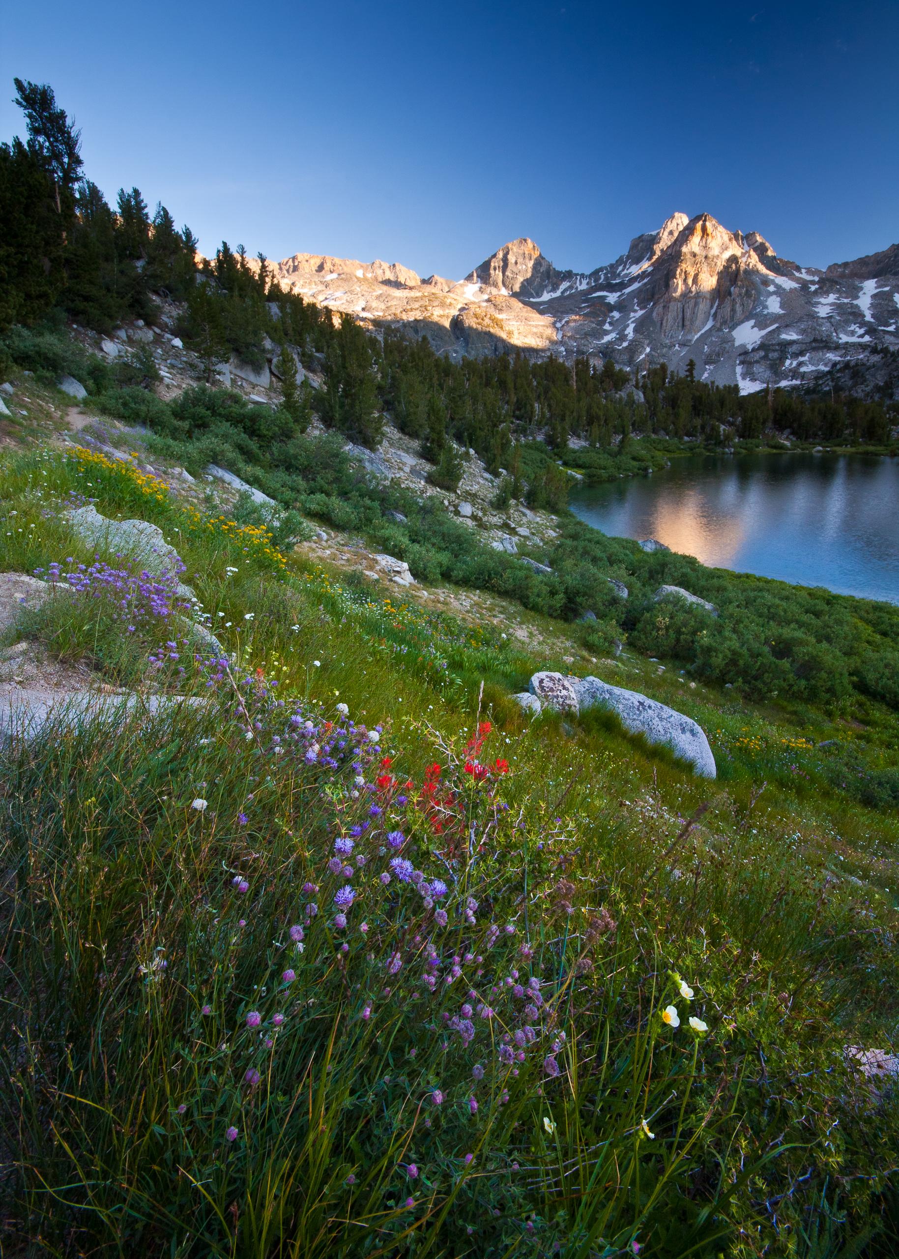 81835 скачать обои Природа, Озеро, Долина, Трава, Горы, Пейзаж, Цветы - заставки и картинки бесплатно