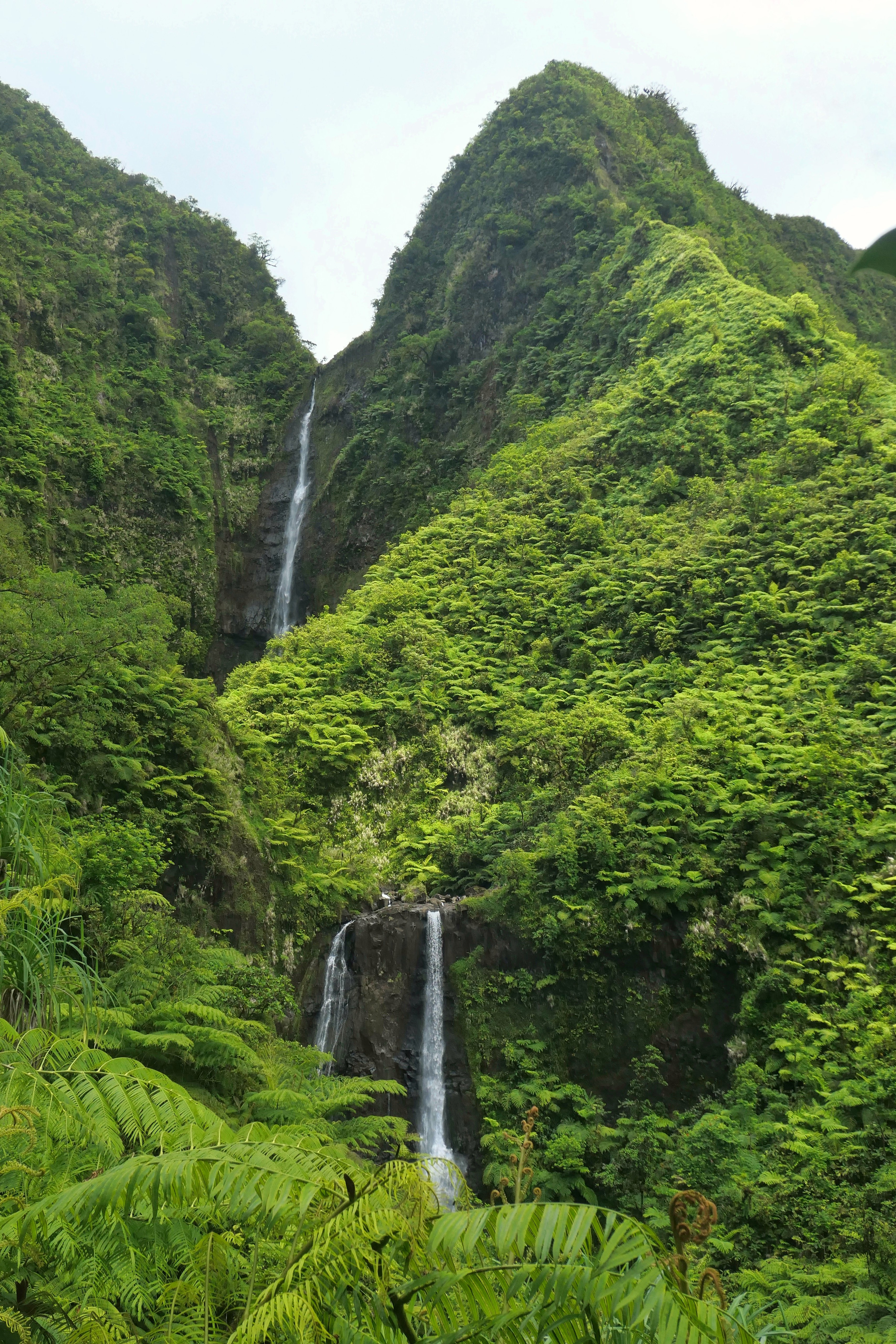 155377 скачать обои Природа, Водопад, Скала, Растения, Поток - заставки и картинки бесплатно