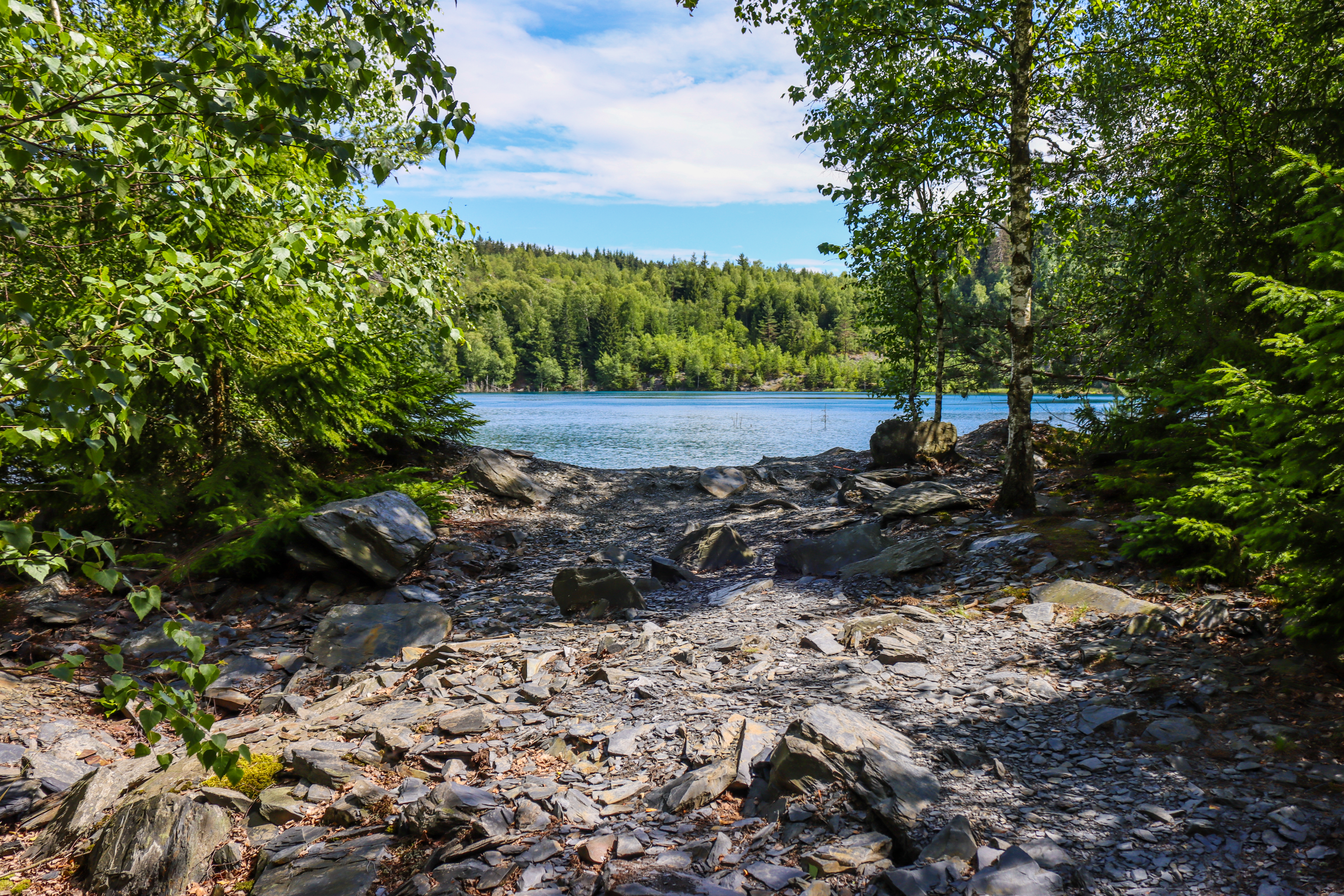 111421 download wallpaper Nature, Rivers, Trees, Stones, Forest, Branches screensavers and pictures for free