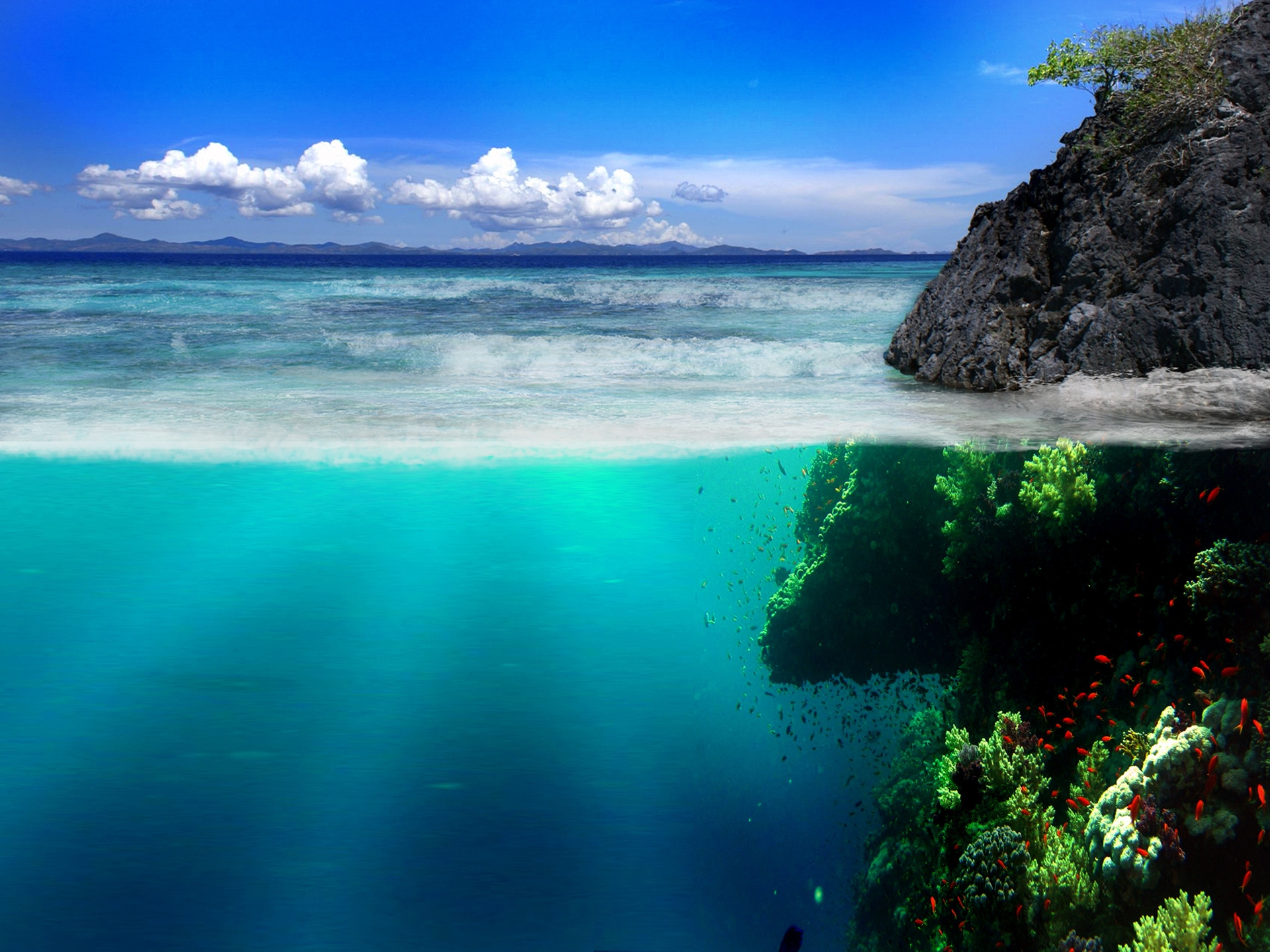 151664 download wallpaper Nature, Sea, Shore, Bank, Rocks, Underwater World, Vegetation, Fish screensavers and pictures for free