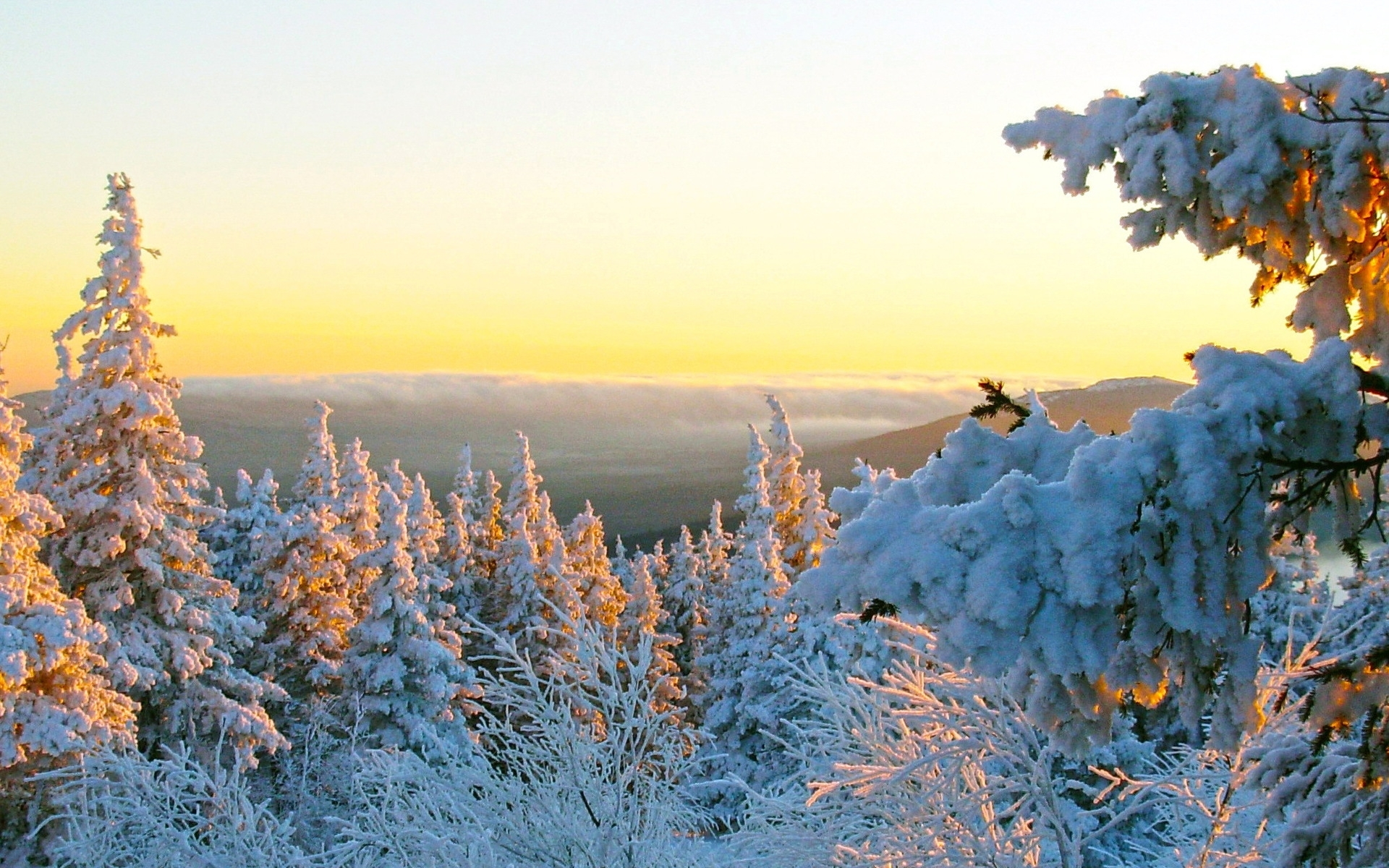 43079 download wallpaper Landscape, Winter, Nature screensavers and pictures for free