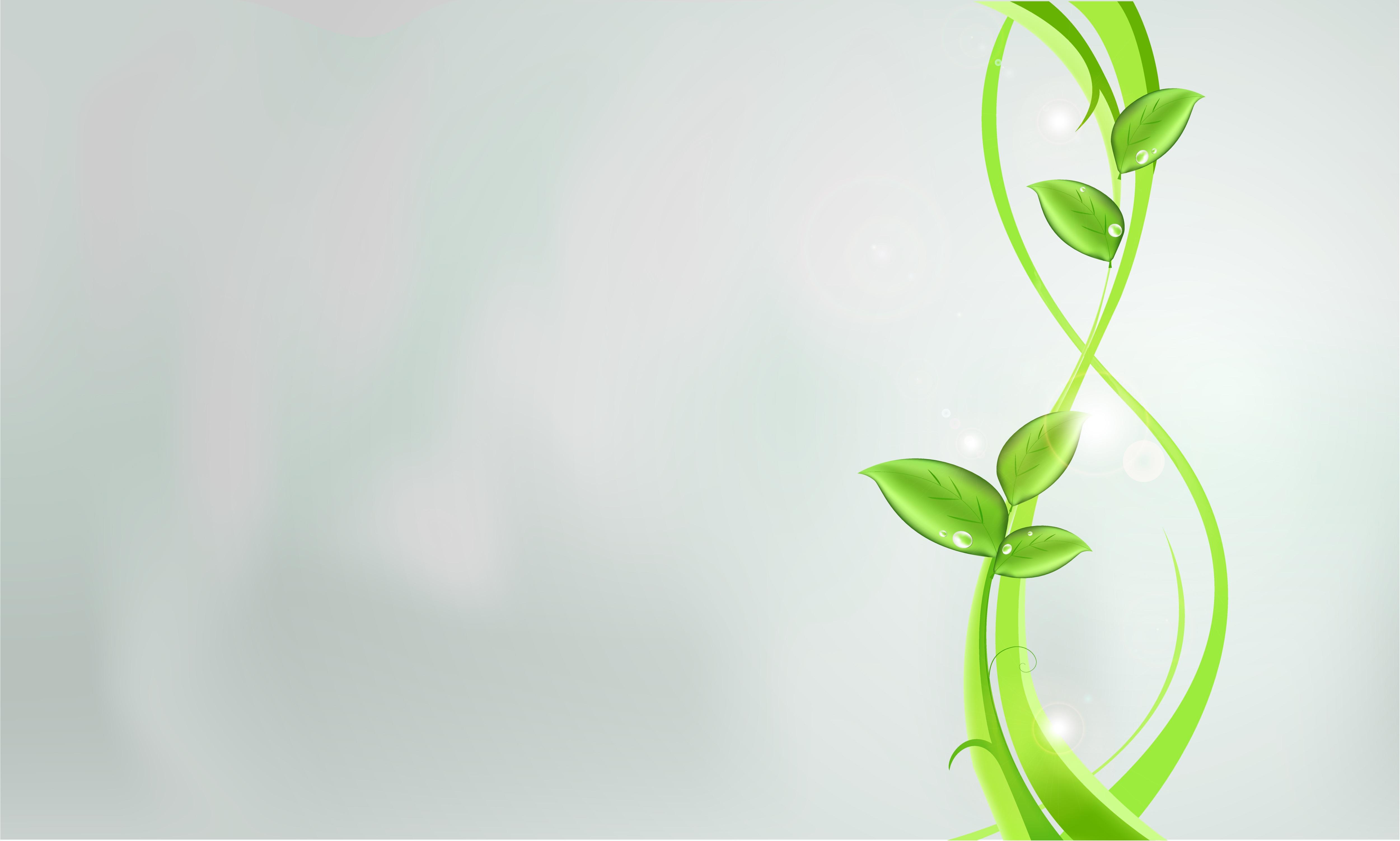 53079 免費下載壁紙 抽象, 植物, 绿色的, 叶, 明亮的, 明亮, 强光, 高光, 模式 屏保和圖片