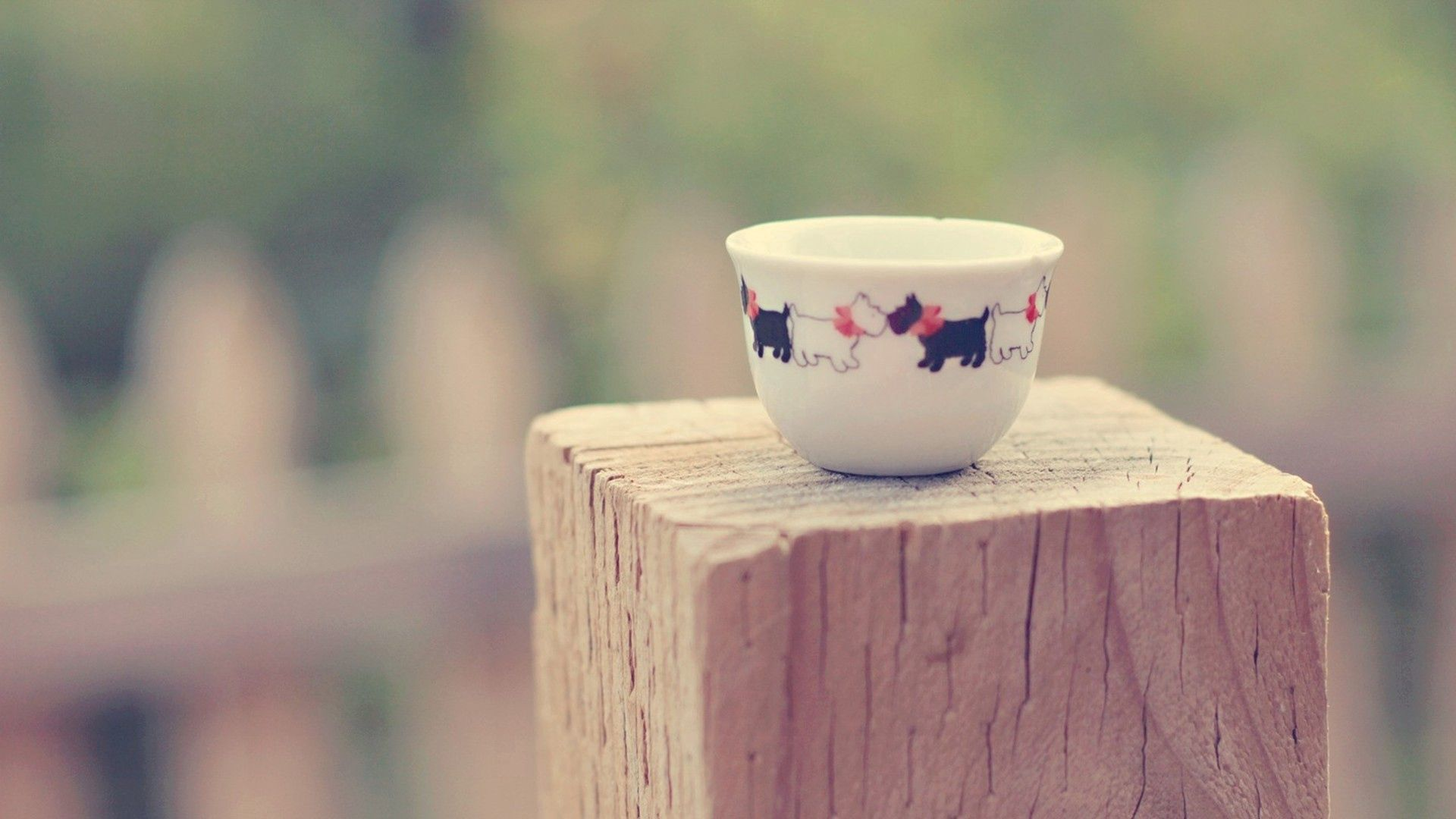 68068 download wallpaper Miscellanea, Miscellaneous, Cup, Saucer, Doggies, Dogs, Tablewares, Stump screensavers and pictures for free