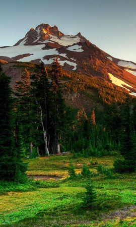94574 скачать обои Деревья, Ели, Природа, Горы, Пейзаж - заставки и картинки бесплатно