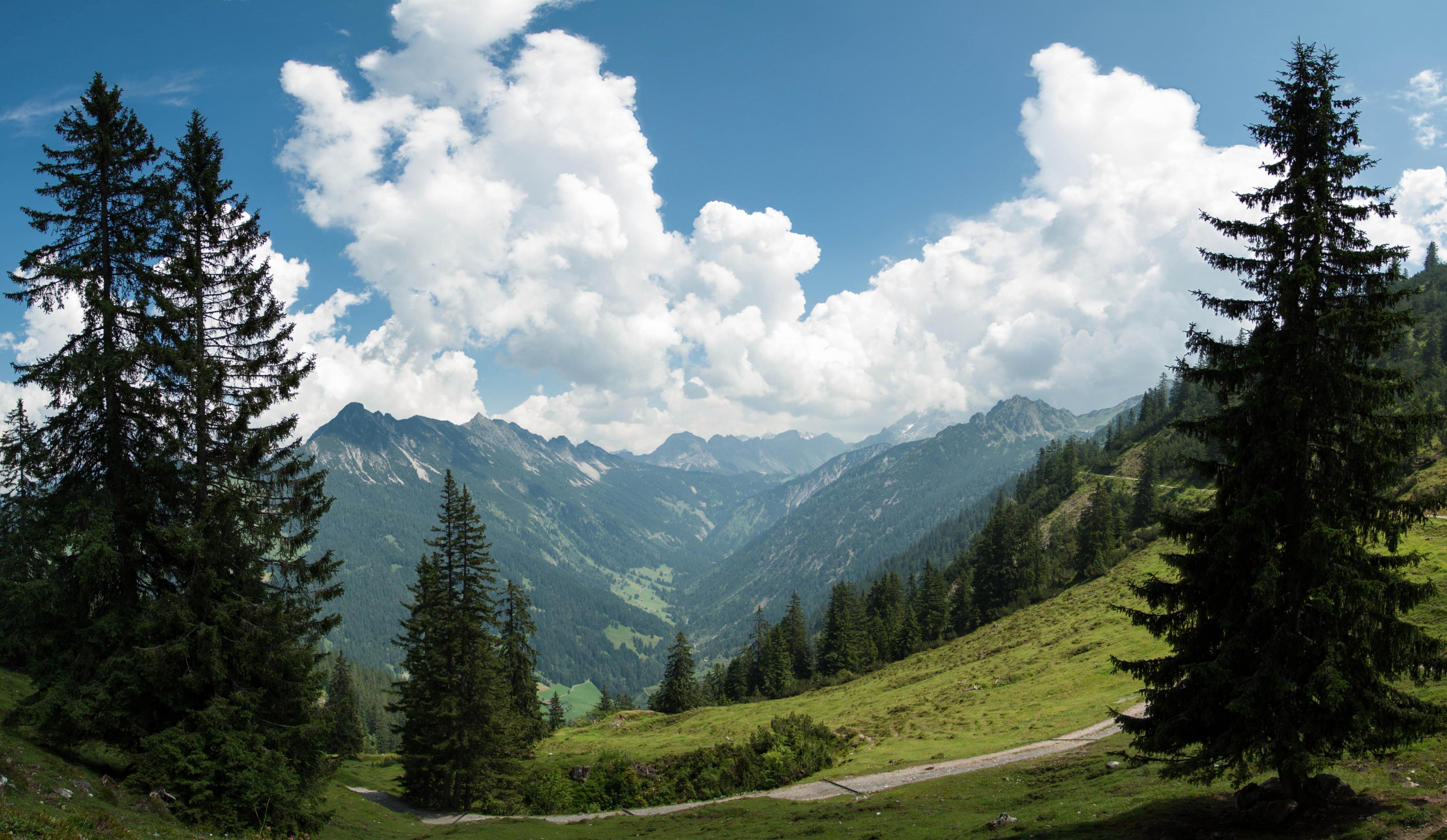 131567 скачать обои Деревья, Природа, Горы, Пейзаж, Сосны - заставки и картинки бесплатно