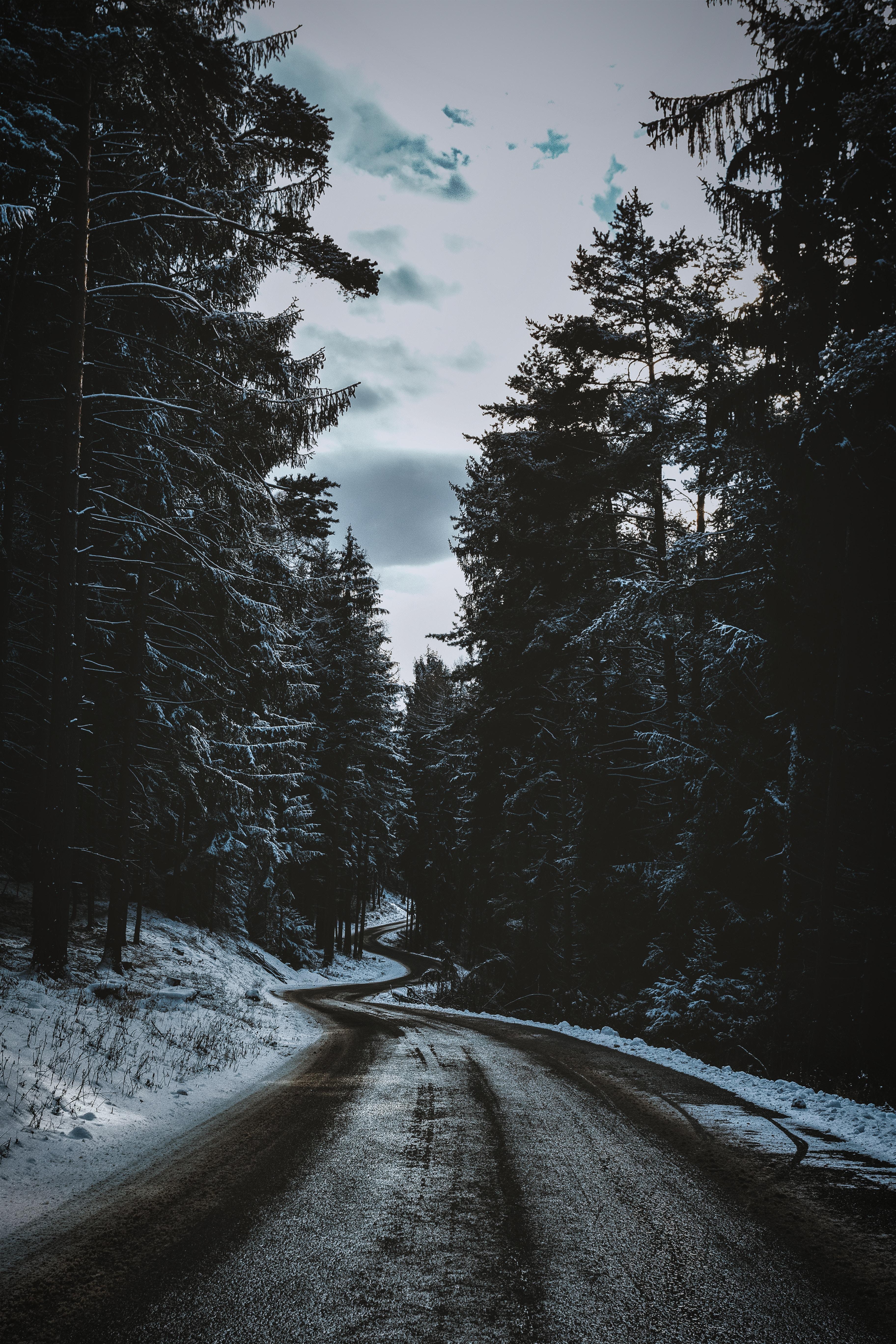 132840 Hintergrundbild 128x160 kostenlos auf deinem Handy, lade Bilder Winterreifen, Natur, Bäume, Schnee, Straße, Wicklung, Gewundenen 128x160 auf dein Handy herunter