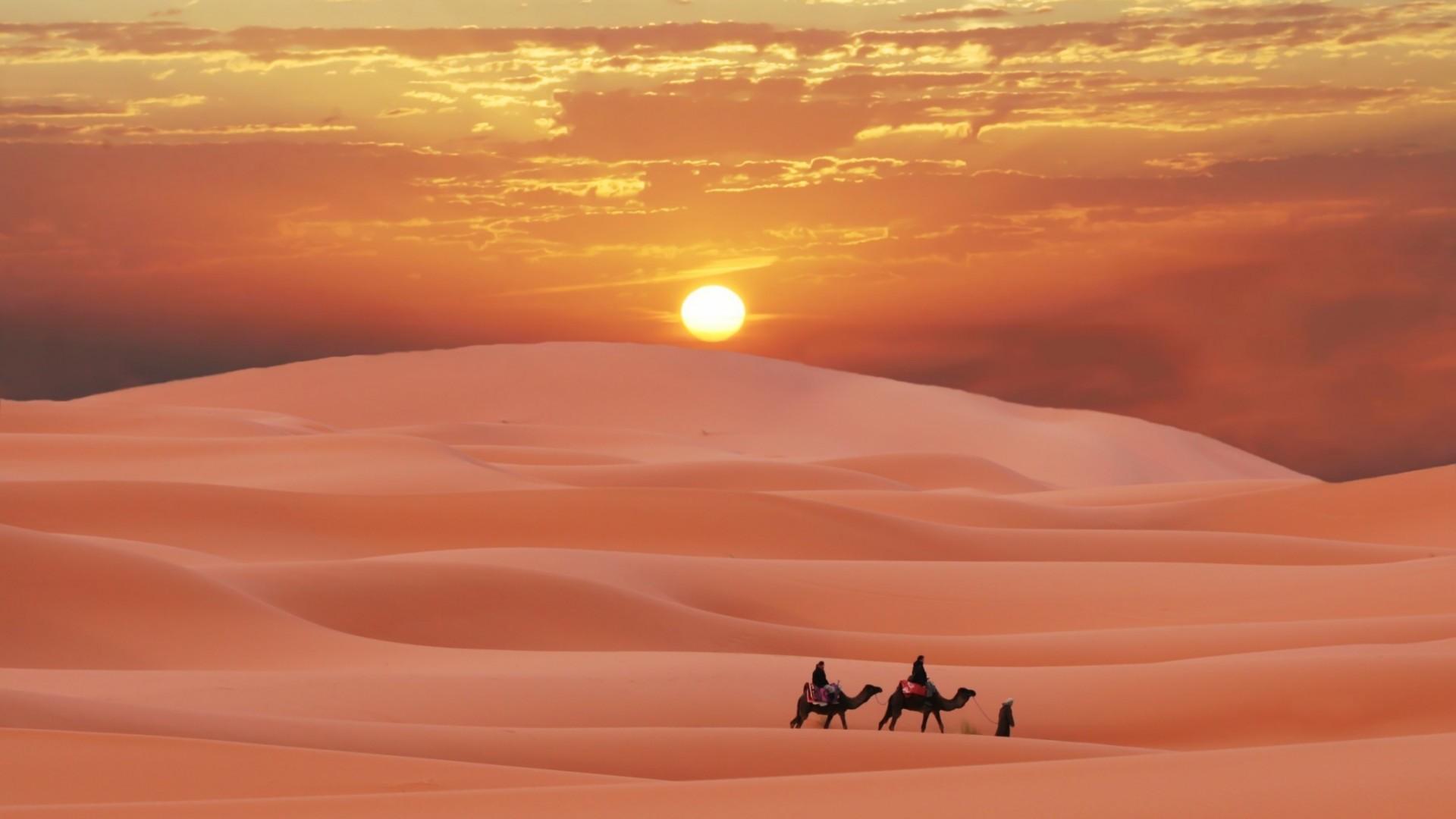 19632 download wallpaper Landscape, Sunset, Sand, Desert, Camels screensavers and pictures for free