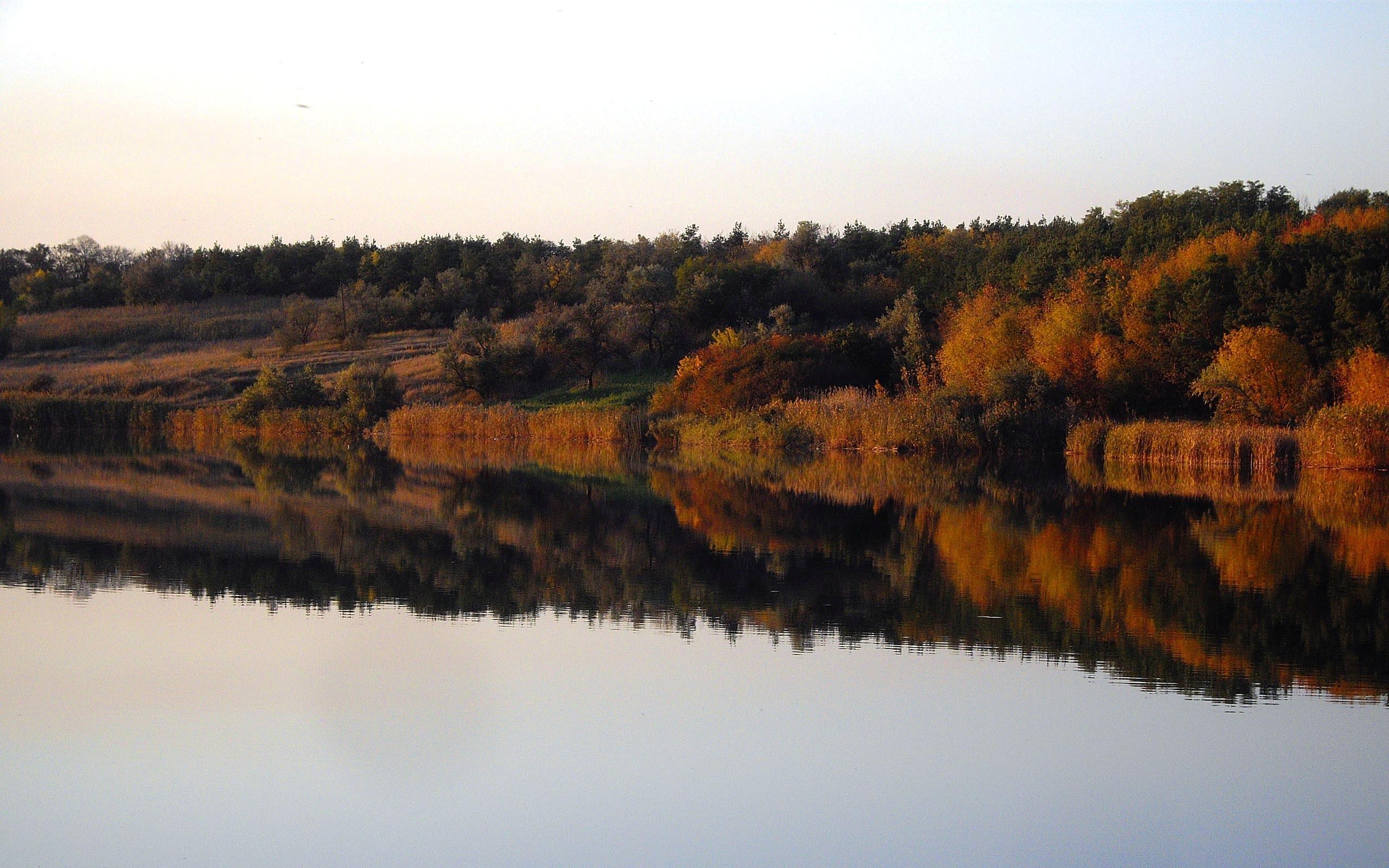 1853 скачать обои Пейзаж, Вода, Река, Деревья, Осень - заставки и картинки бесплатно