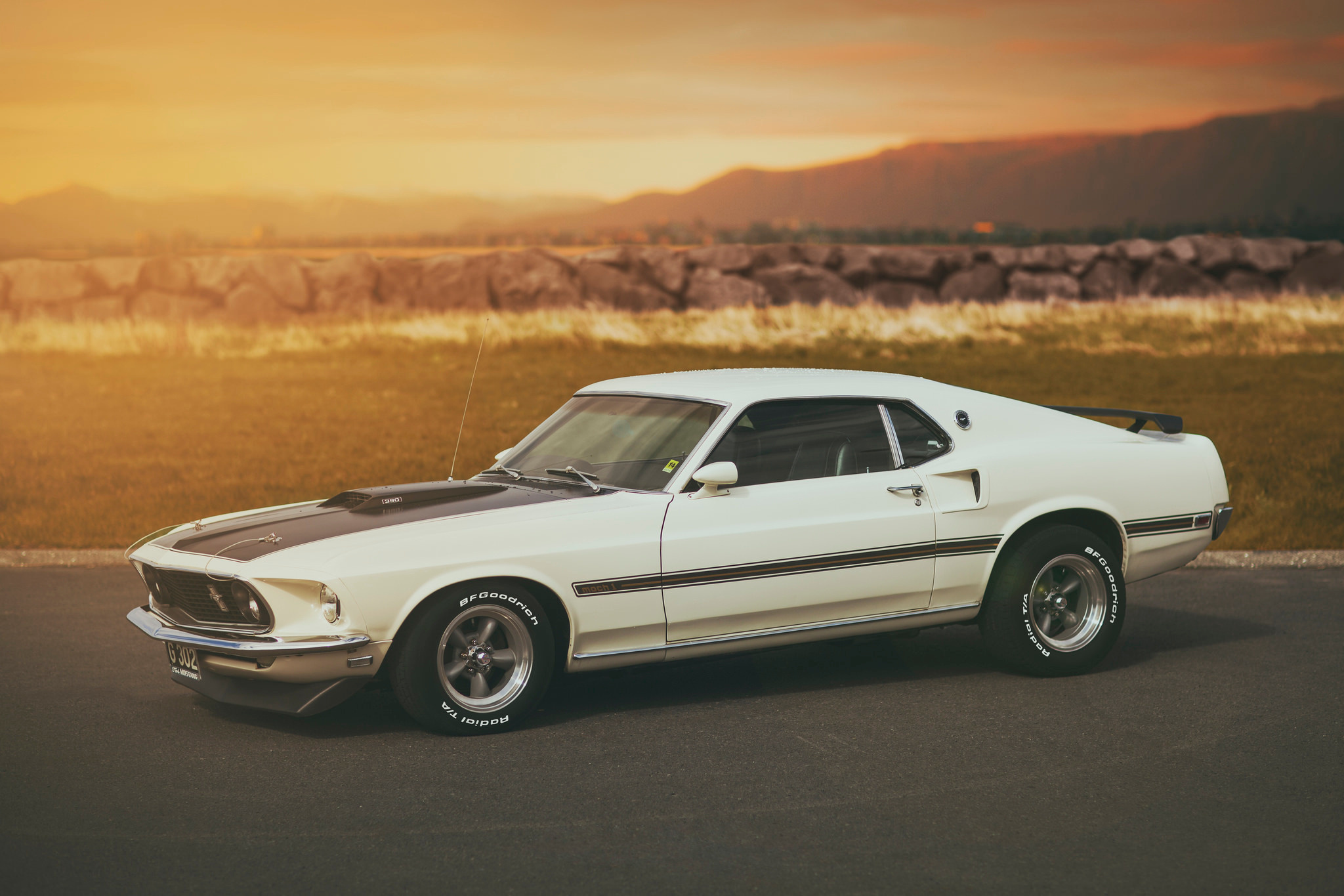 100444 download wallpaper Cars, Ford, Mach 1, Mustang screensavers and pictures for free