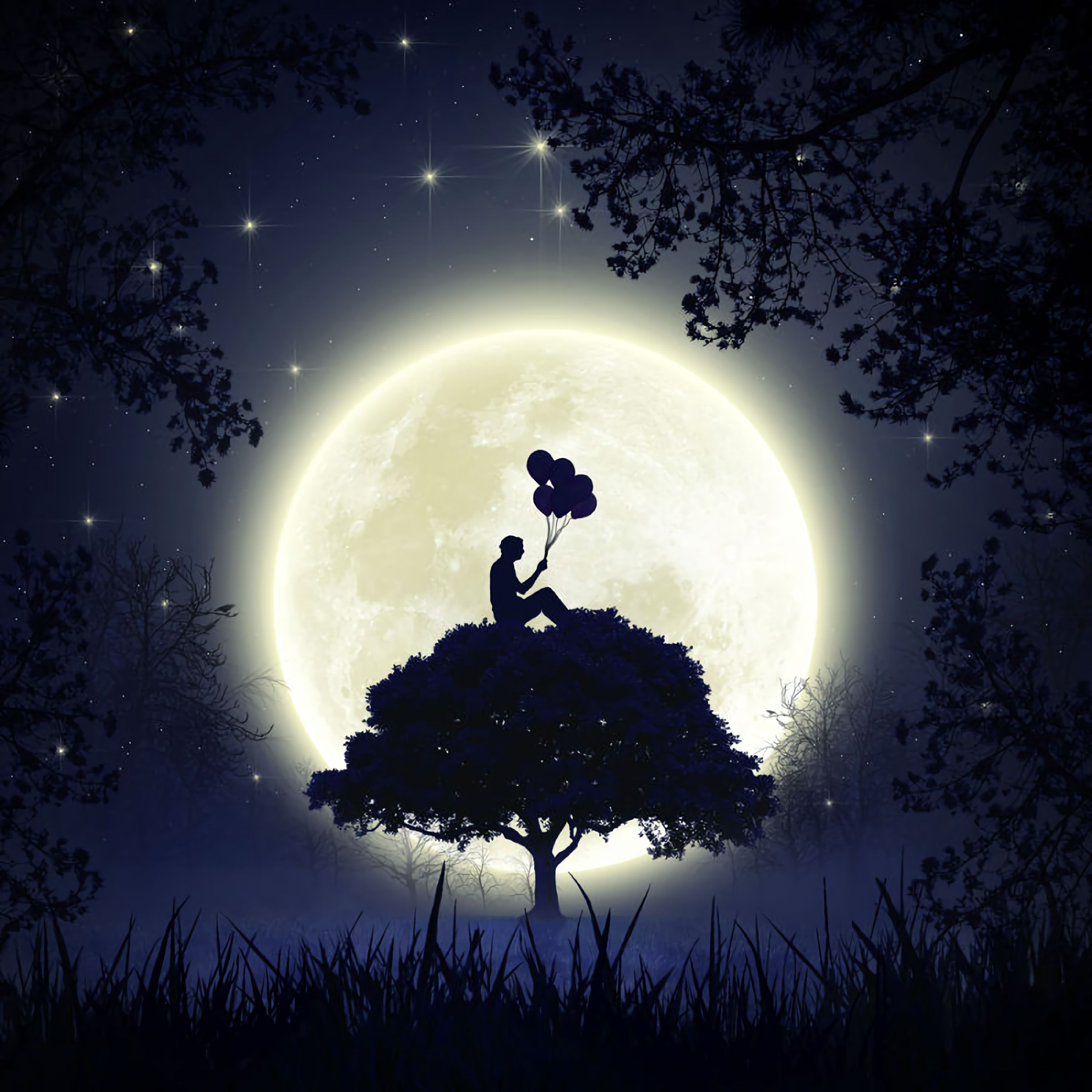 107012 download wallpaper Art, Moon, Balloons, Dark, Silhouette, Wood, Tree, Full Moon, Air Balloons screensavers and pictures for free
