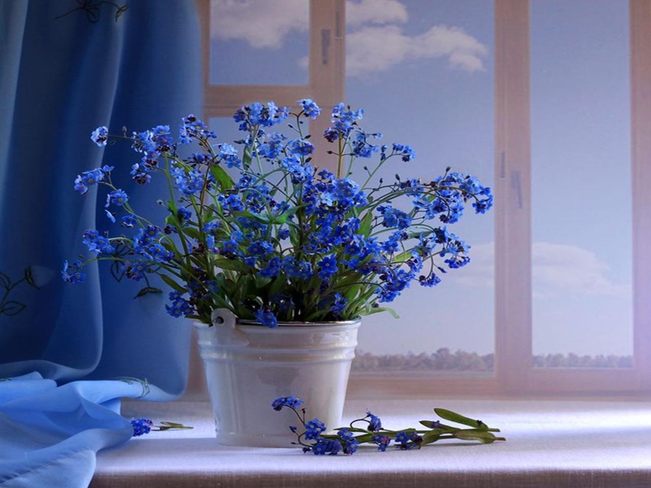 33295 скачать обои Растения, Цветы, Букеты - заставки и картинки бесплатно