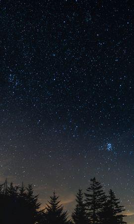 60515 скачать обои Природа, Звездное Небо, Ночь, Деревья, Ночной Пейзаж - заставки и картинки бесплатно