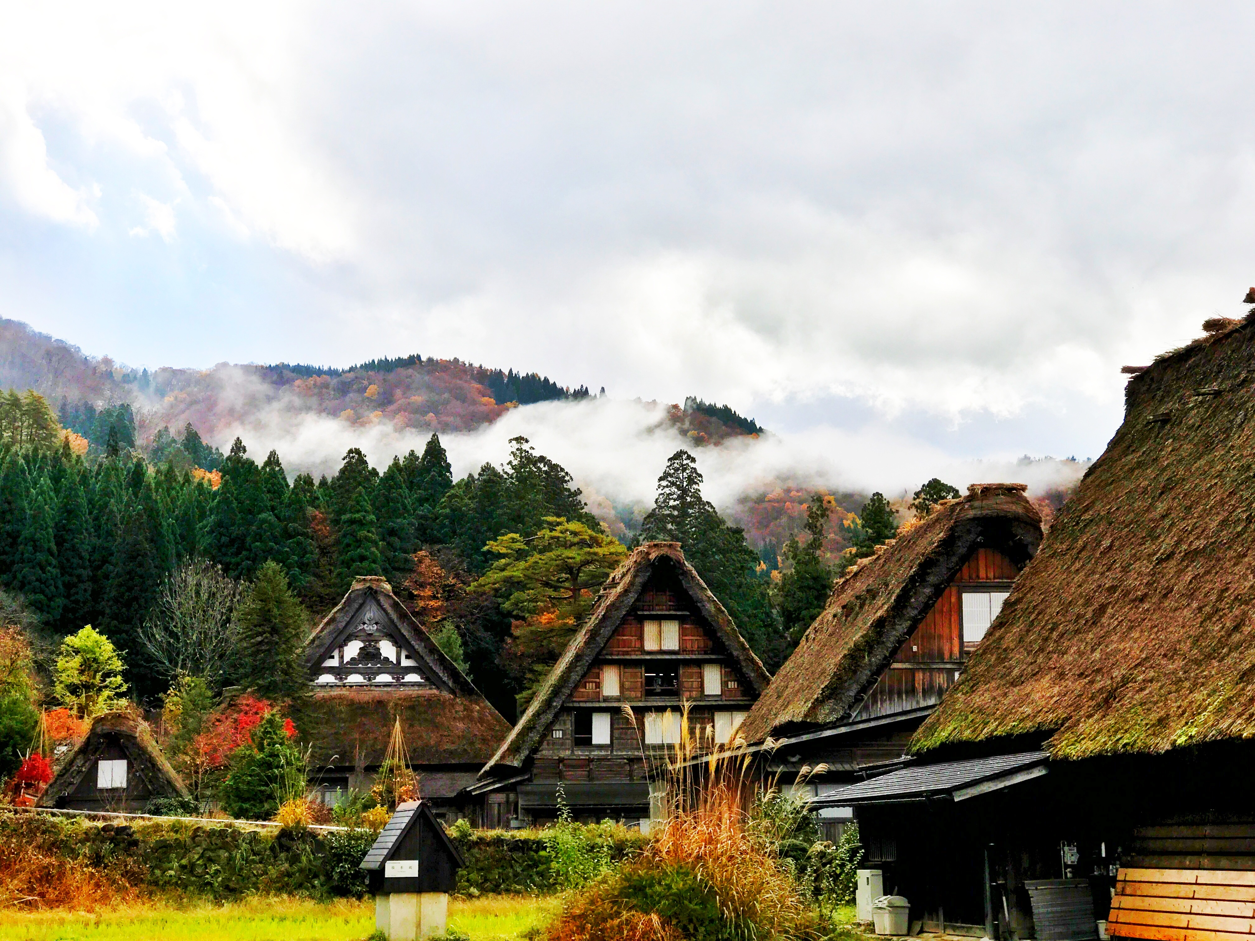 156032 Screensavers and Wallpapers Cities for phone. Download Cities, Houses, Trees, Mountains, Japan, Shirakawa pictures for free