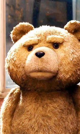 15859 télécharger le fond d'écran Cinéma, Bears, Ted - économiseurs d'écran et images gratuitement