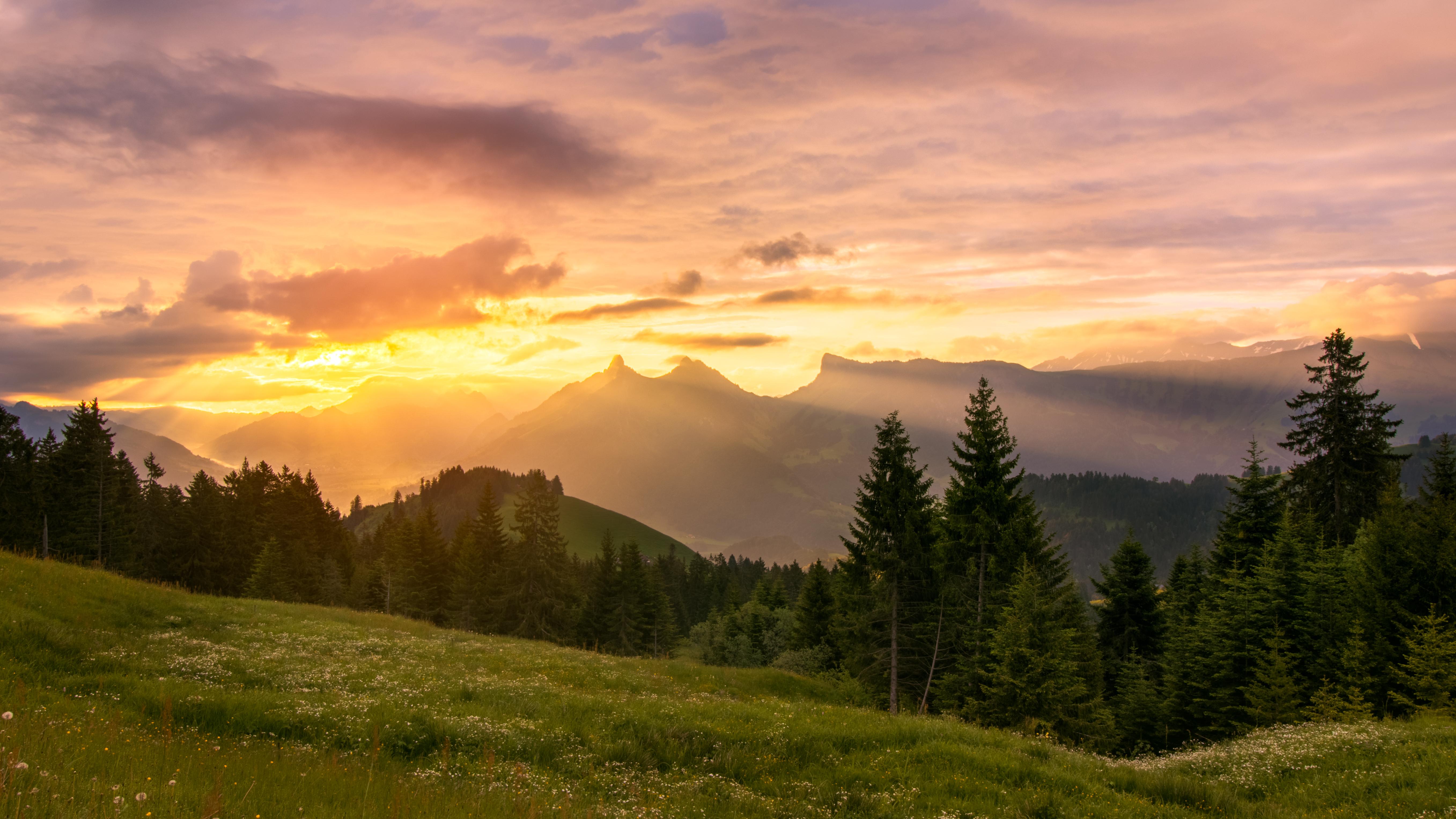 56206 скачать обои Природа, Закат, Лужайка, Деревья, Горы, Пейзаж - заставки и картинки бесплатно
