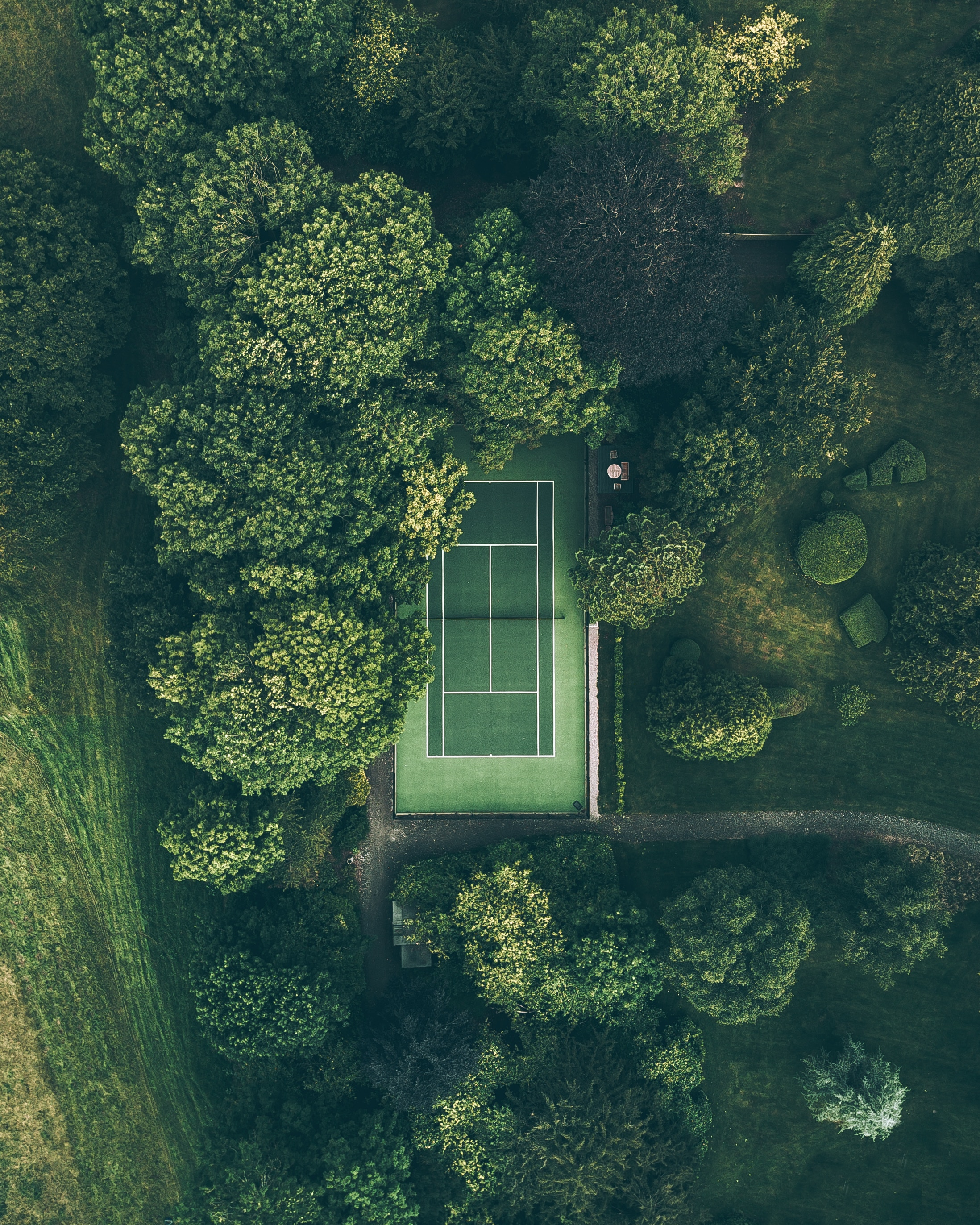 127921 download wallpaper Trees, View From Above, Minimalism, Court screensavers and pictures for free