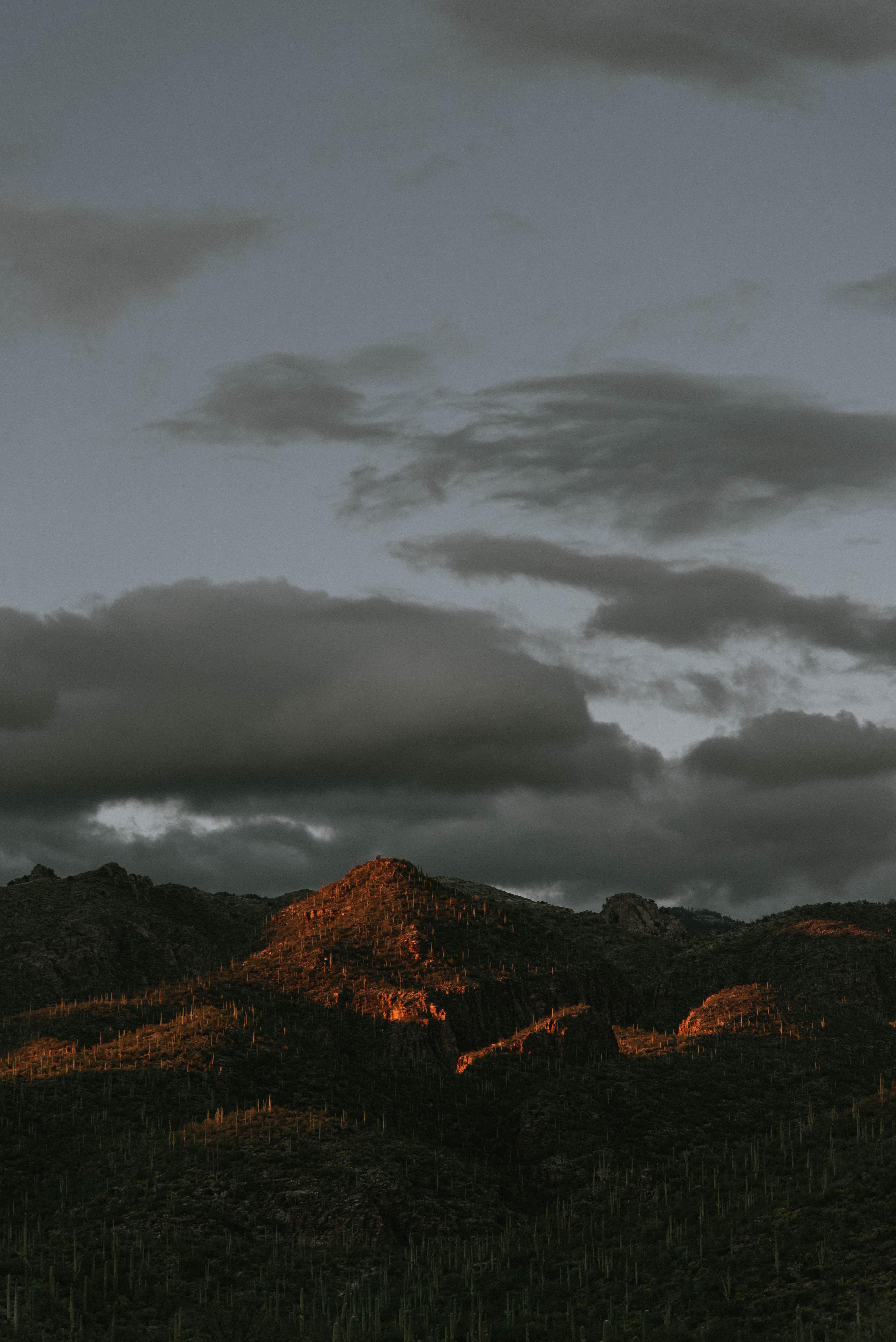 73331 скачать обои Природа, Вершины, Пасмурно, Горы, Кактусы - заставки и картинки бесплатно
