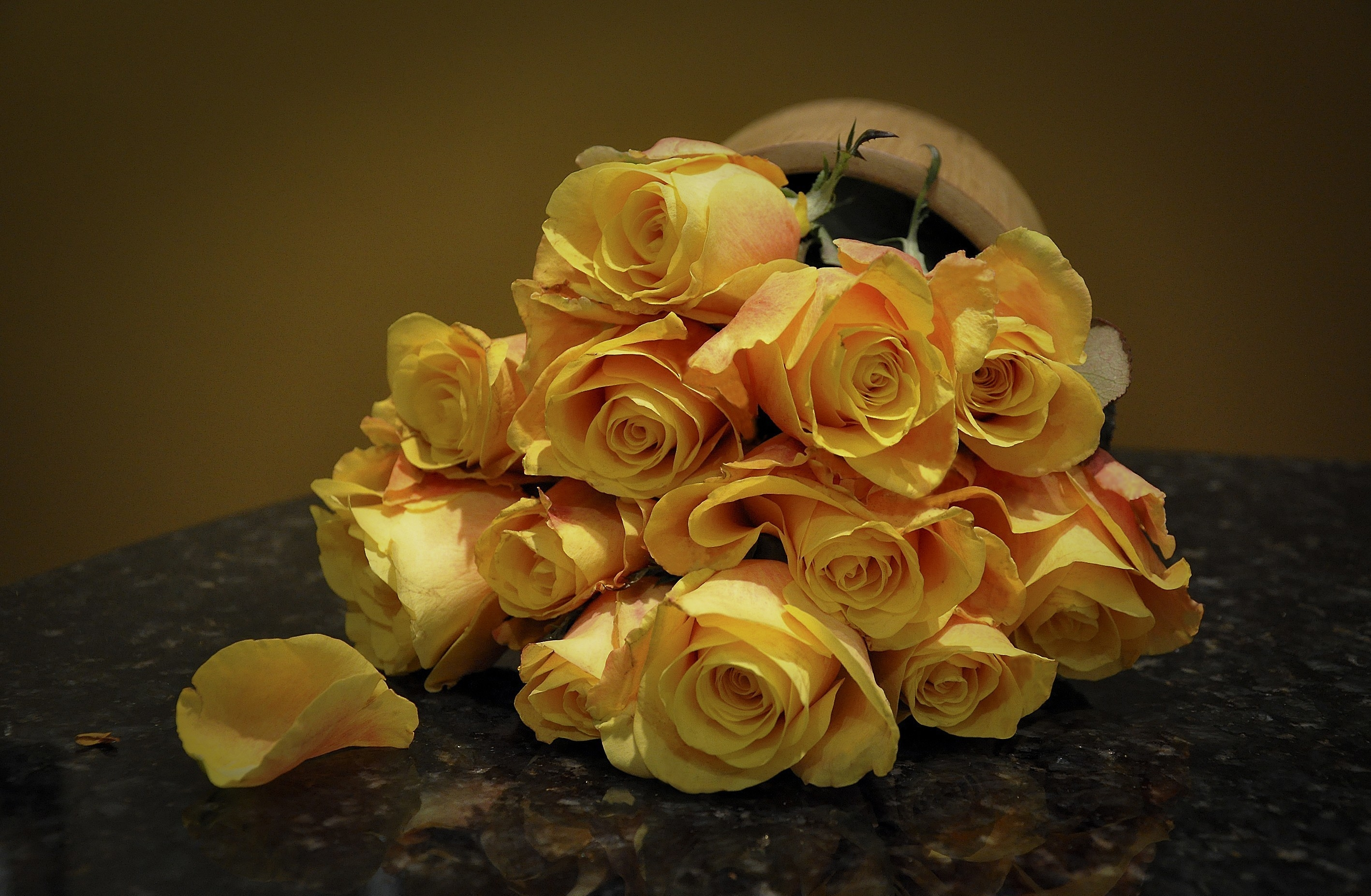 59627 download wallpaper Flowers, Roses, Spotted, Spotty, Bouquet screensavers and pictures for free