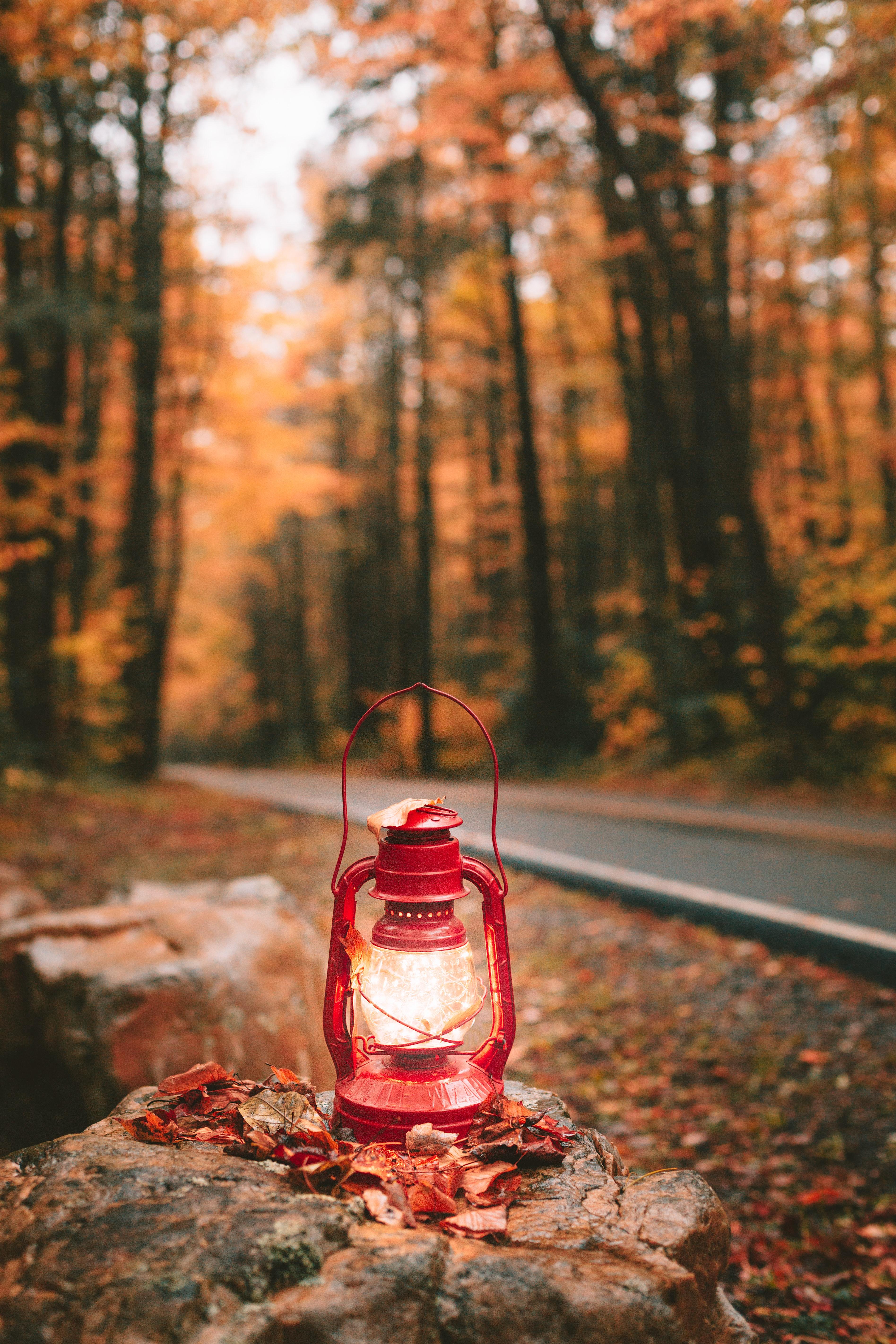 105962 скачать обои Разное, Фонарь, Свет, Красный, Осень - заставки и картинки бесплатно