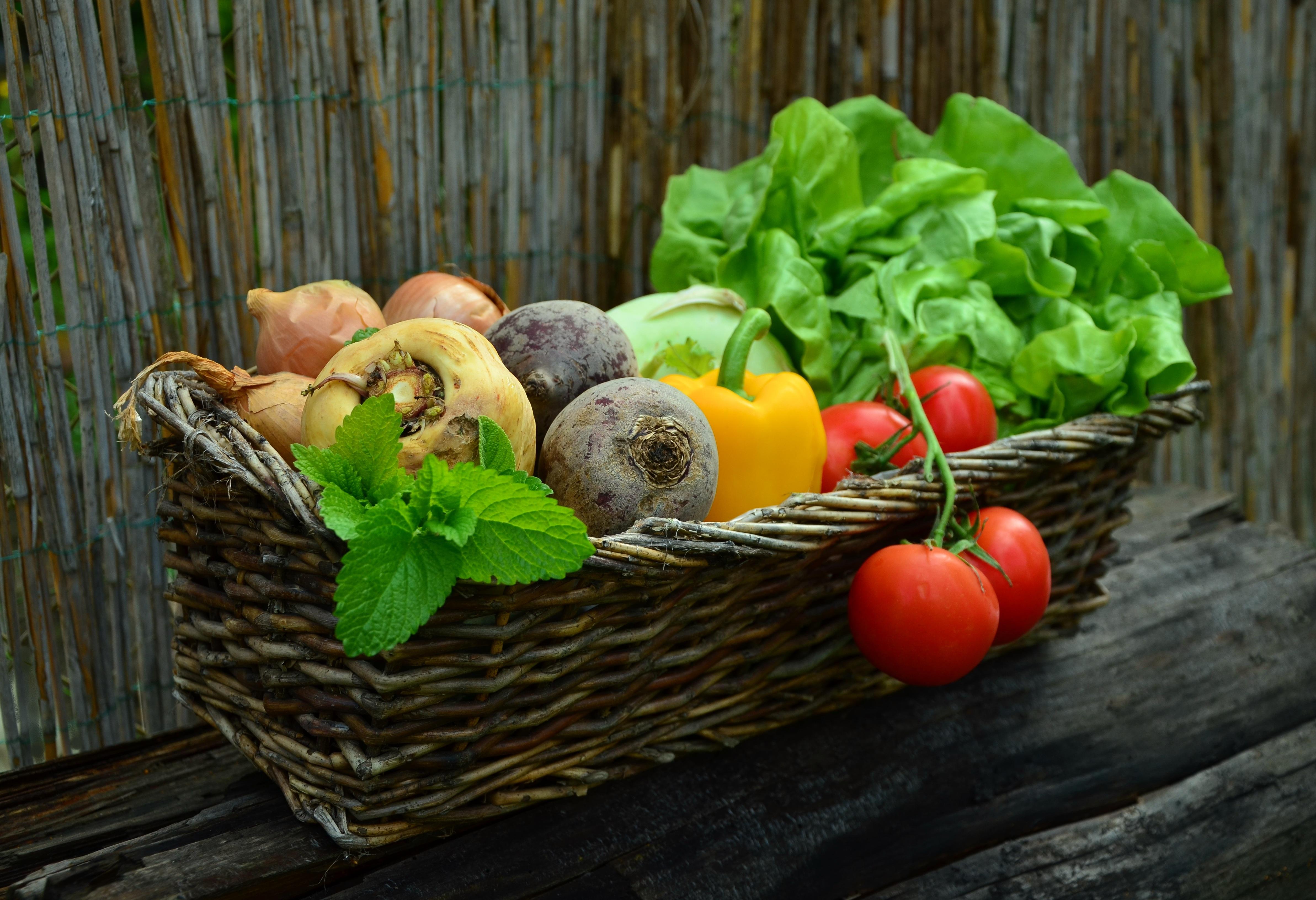 66933 Заставки и Обои Овощи на телефон. Скачать Еда, Овощи, Зелень, Корзина, Свекла, Редька картинки бесплатно