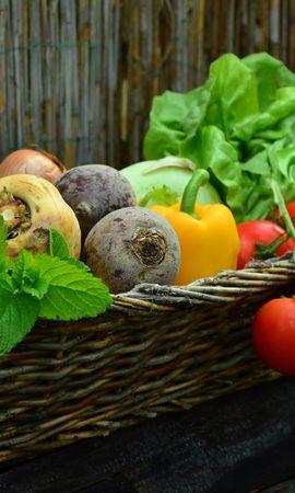 66933 télécharger le fond d'écran Nourriture, Panier, Betterave, Un Radis, Radis, Légumes Verts, Verdure, Légumes - économiseurs d'écran et images gratuitement