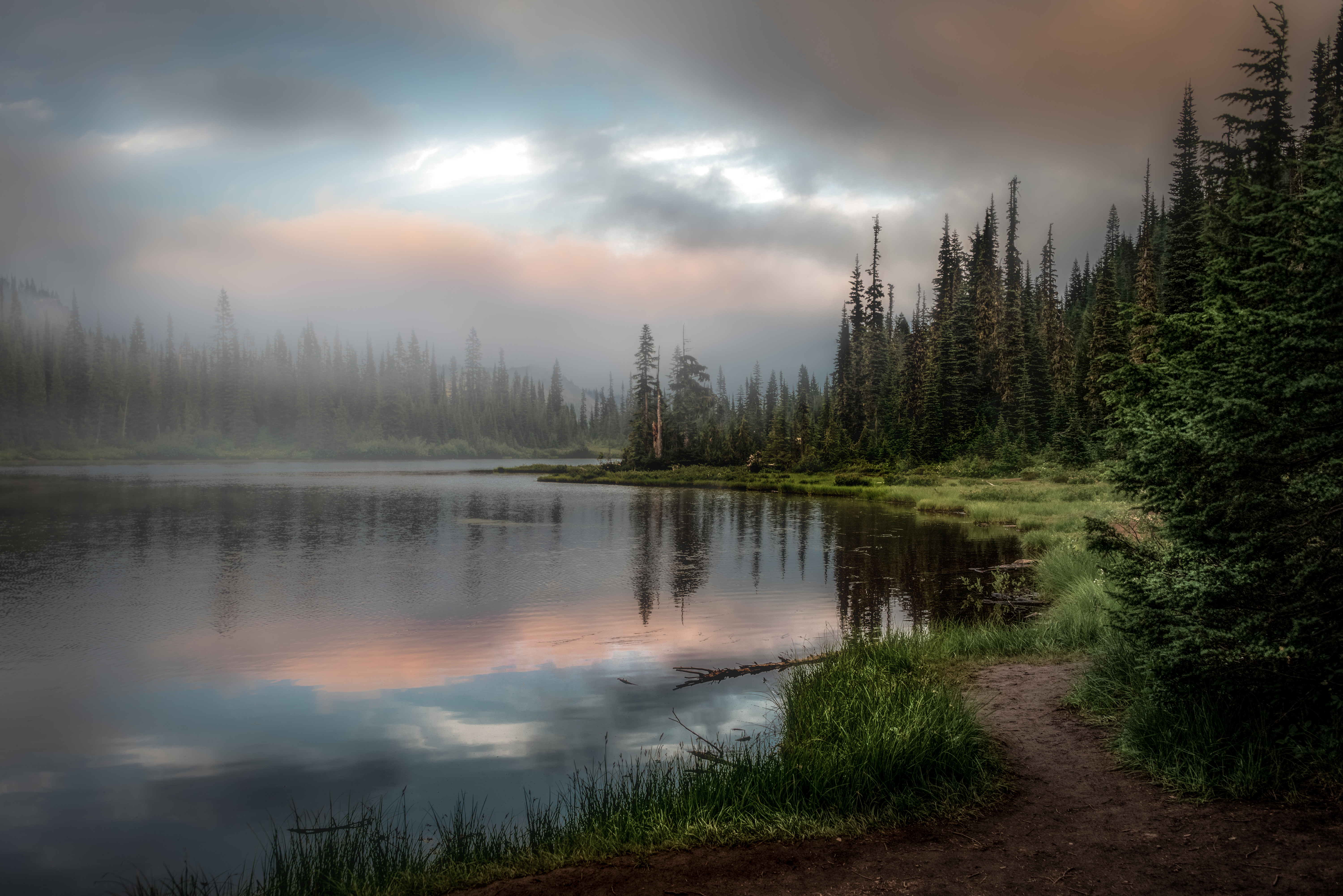 105279 Screensavers and Wallpapers Spruce for phone. Download Nature, Grass, Lake, Forest, Spruce, Fir pictures for free