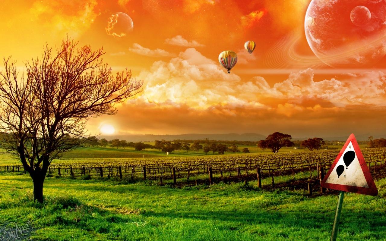 22154 скачать обои Пейзаж, Закат, Трава, Небо, Облака, Виноград, Воздушные Шары - заставки и картинки бесплатно