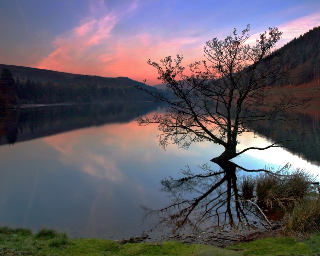 9176 скачать обои Пейзаж, Вода, Деревья, Озера - заставки и картинки бесплатно
