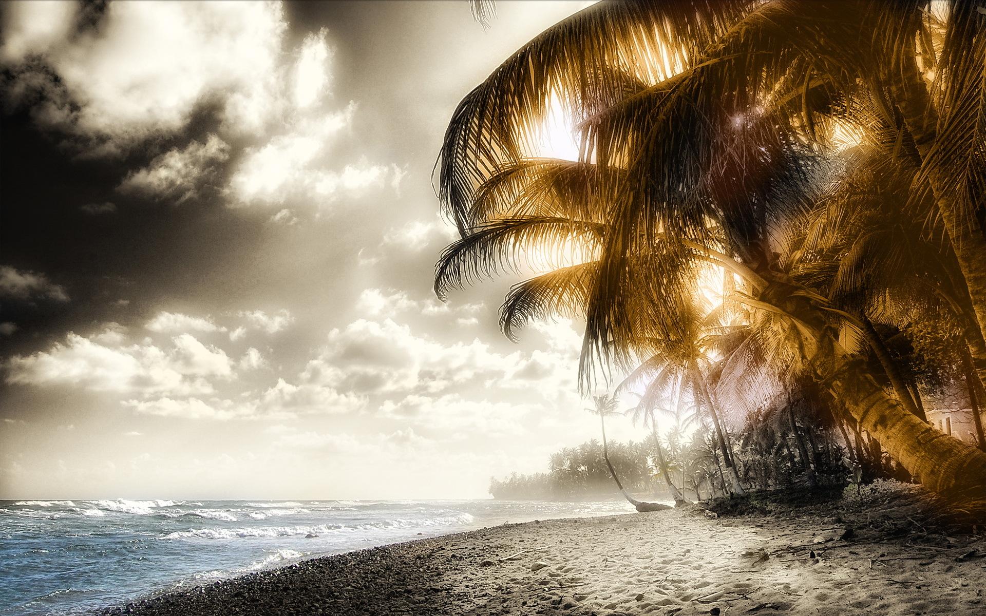 11655 скачать обои Пейзаж, Артфото, Пляж, Пальмы - заставки и картинки бесплатно