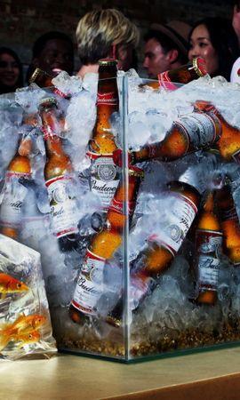 1847 baixar papel de parede Engraçado, Comida, Bebidas, Cerveja - protetores de tela e imagens gratuitamente
