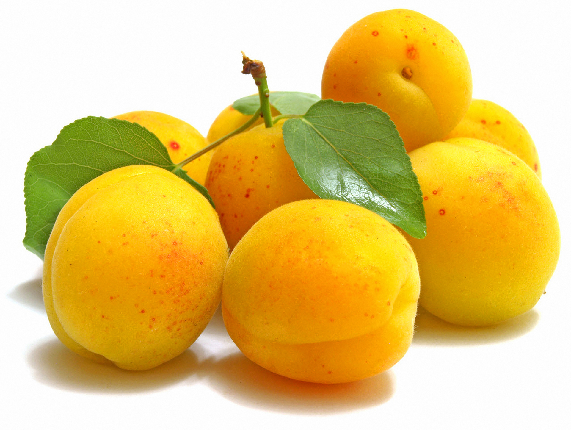 108932 Screensavers and Wallpapers Fruits for phone. Download Food, Apricots, Leaves, Ripe, Fruits pictures for free