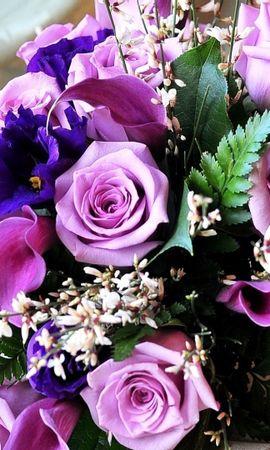 47876 télécharger le fond d'écran Plantes, Fleurs, Bouquets - économiseurs d'écran et images gratuitement