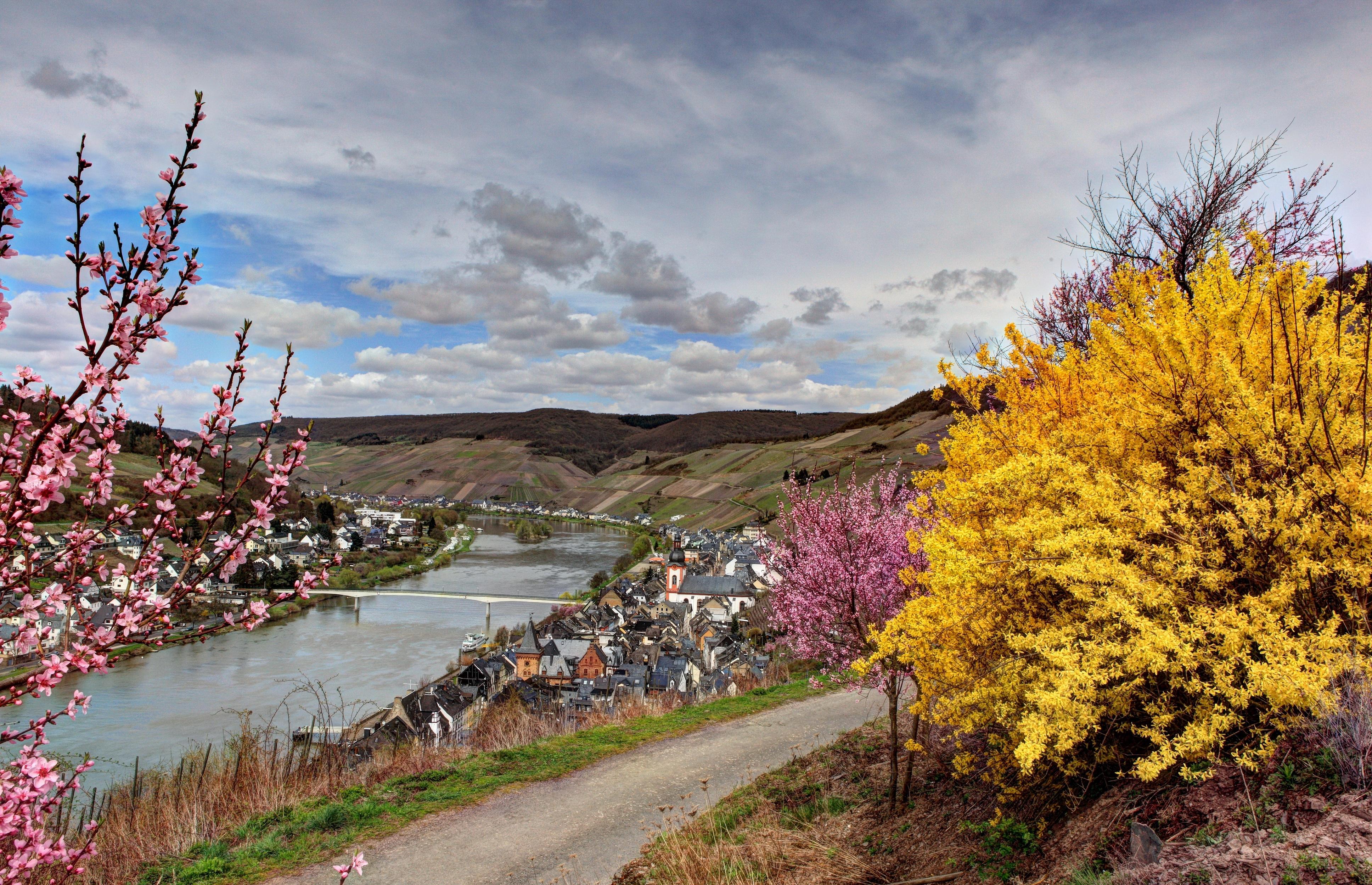 104688 fond d'écran 540x960 sur votre téléphone gratuitement, téléchargez des images Rivières, Nature, Buissons, Allemagne 540x960 sur votre mobile