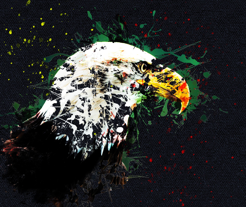149270 Hintergrundbild herunterladen Kunst, Schnabel, Adler - Bildschirmschoner und Bilder kostenlos