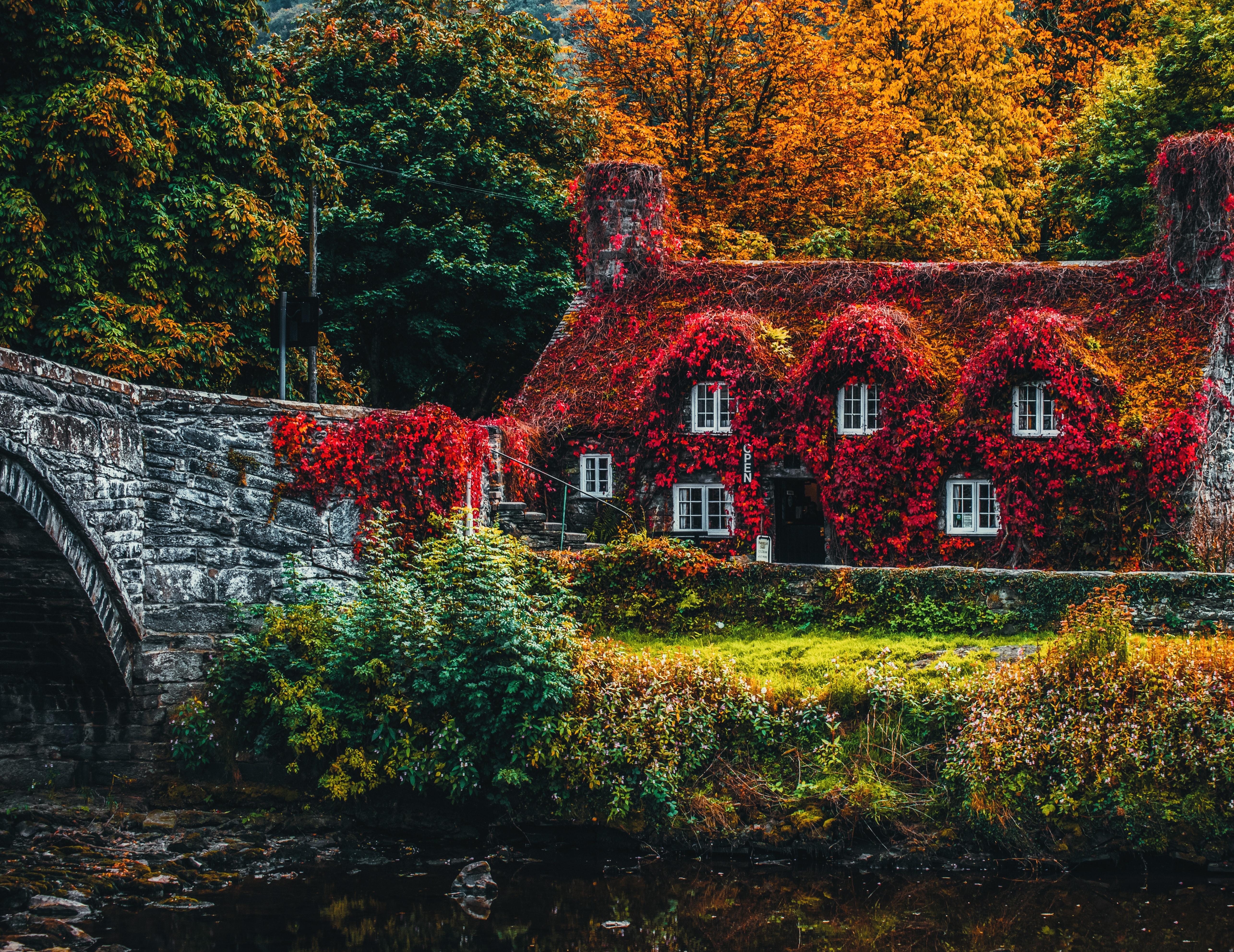 134737 завантажити шпалери Осінь, Природа, Листя, Річка, Будиночок, Садиба, Барви Осені, Осінні Фарби - заставки і картинки безкоштовно