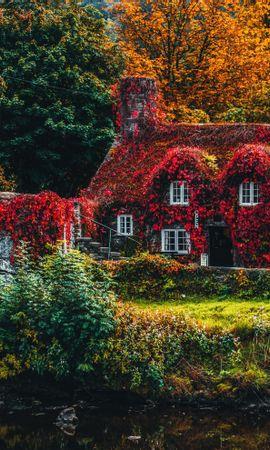 134737 скачать обои Природа, Домик, Осень, Река, Листва, Краски Осени - заставки и картинки бесплатно