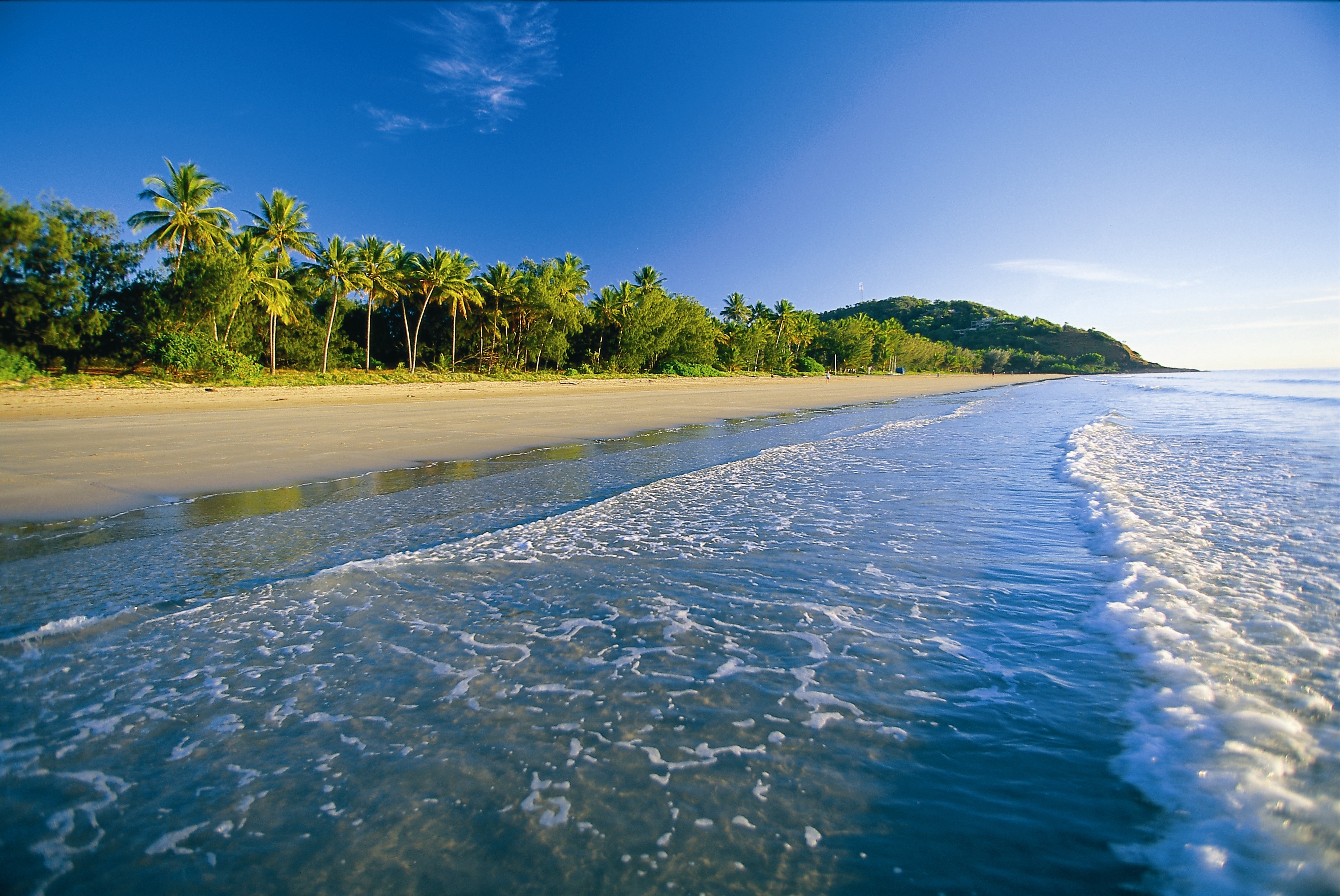 62554 Screensavers and Wallpapers Beach for phone. Download Beach, Nature, Sea, Sand, Palms, Foam, Tropics pictures for free