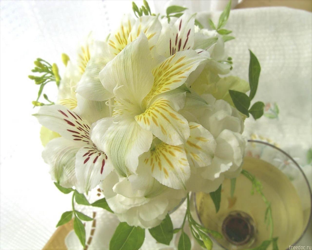 7976 скачать обои Растения, Цветы, Лилии - заставки и картинки бесплатно
