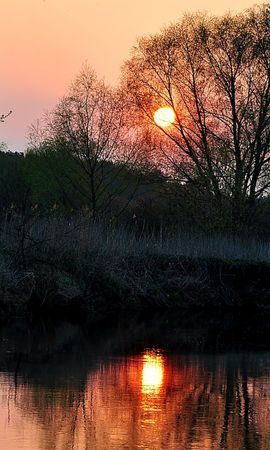 25557 скачать обои Пейзаж, Река, Деревья, Закат - заставки и картинки бесплатно