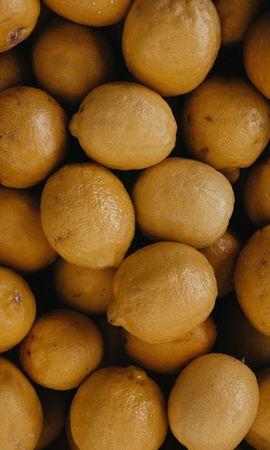 Скачать бесплатно картинку 124307: Еда, Цитрус, Желтый, Фрукты, Лимоны обои на телефон