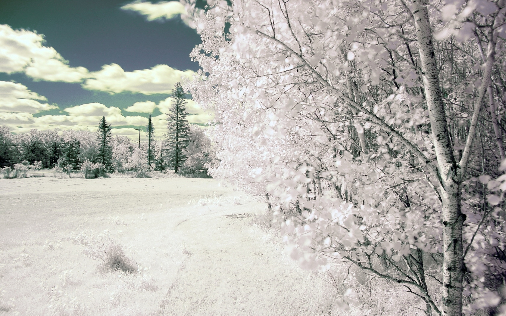 42635 download wallpaper Landscape, Winter screensavers and pictures for free